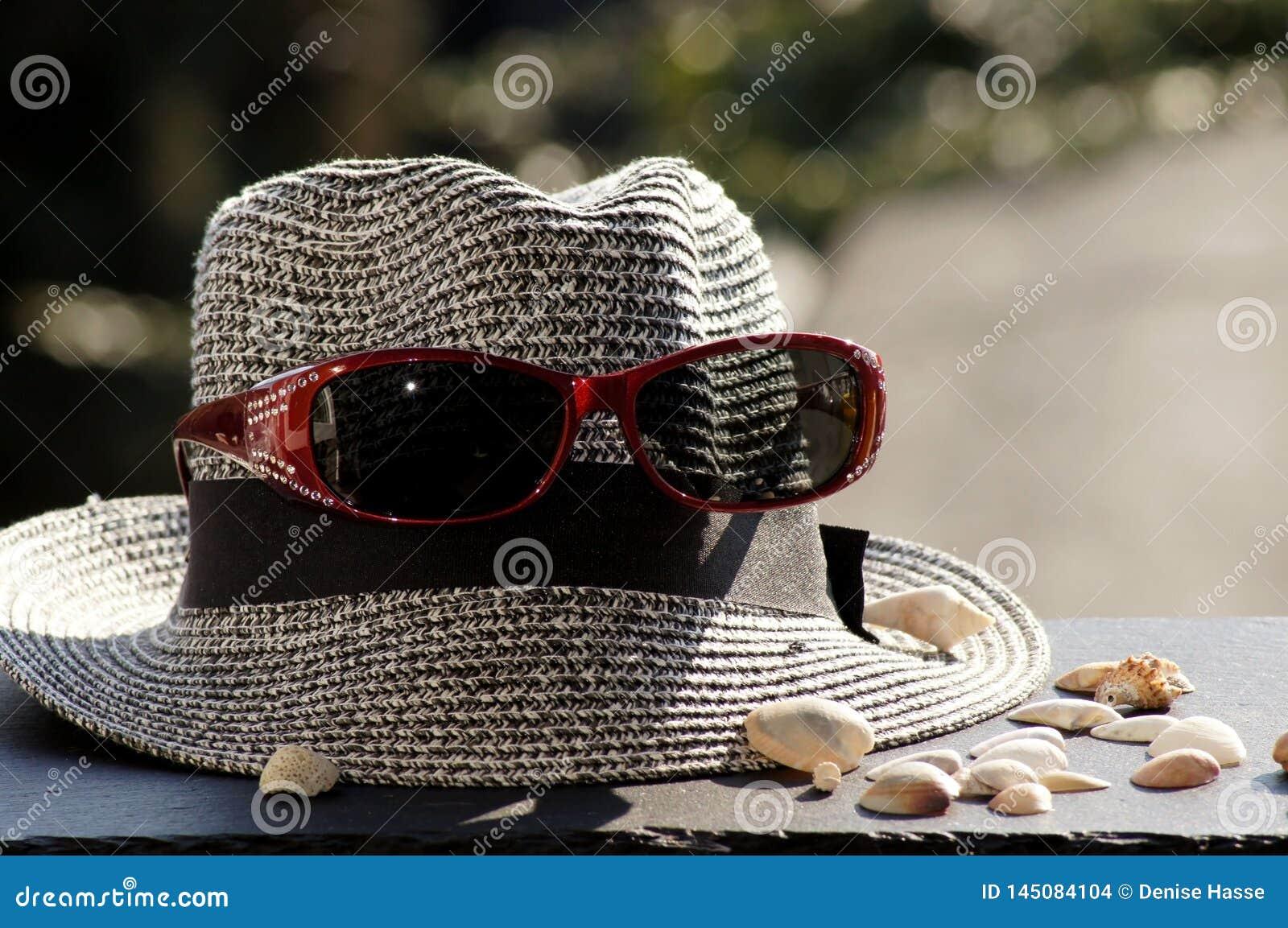 Chapéu, óculos de sol e escudos de Sun