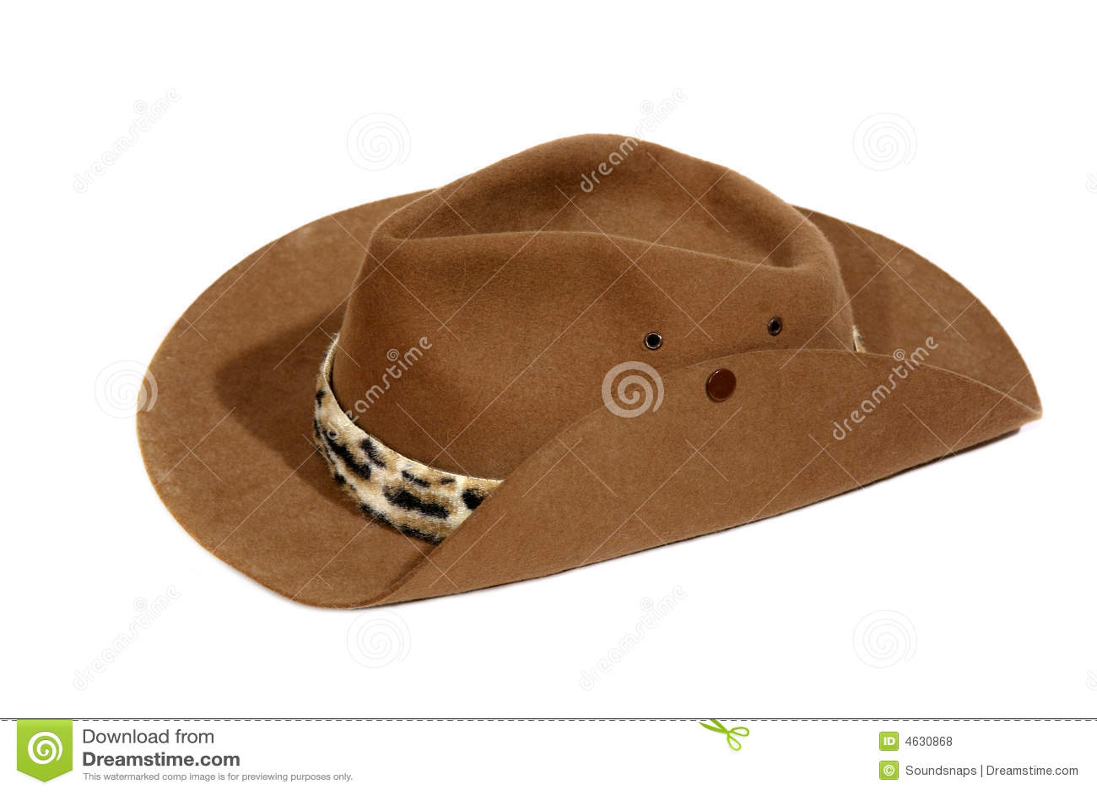Chapéu de cowboy ocidental