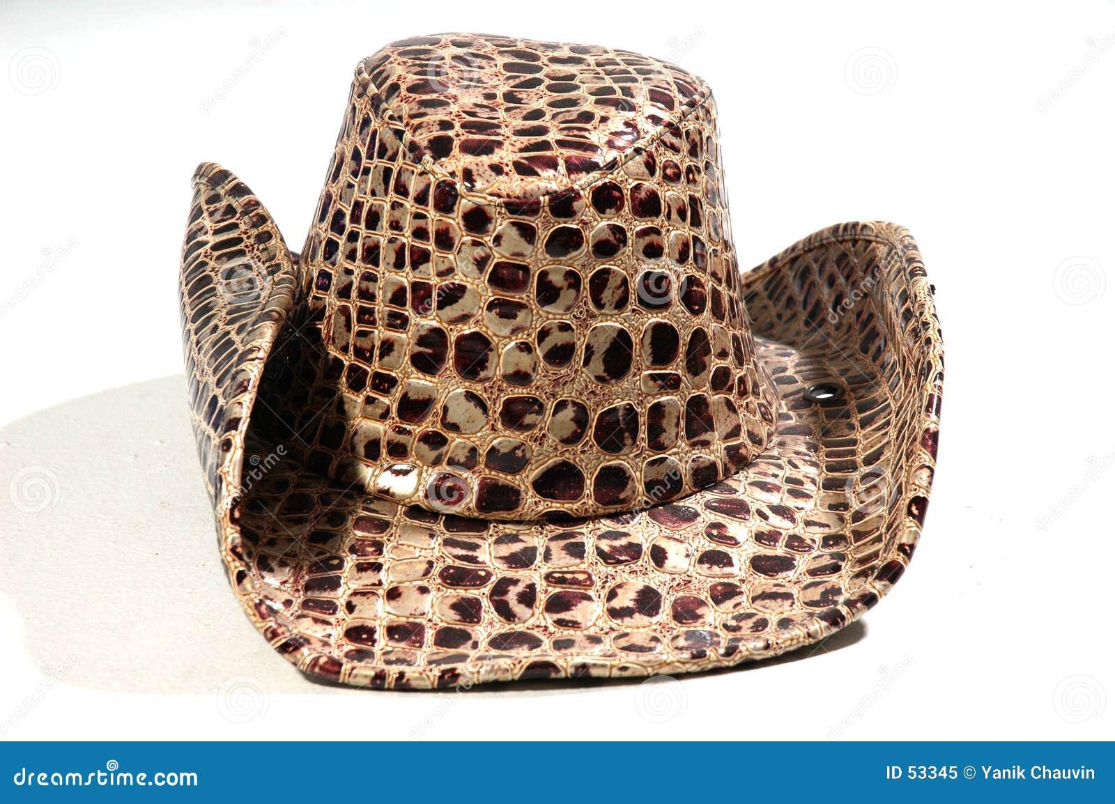 Download Chapeau image stock. Image du cowboy, vêtements, cuir, reptile - 53345