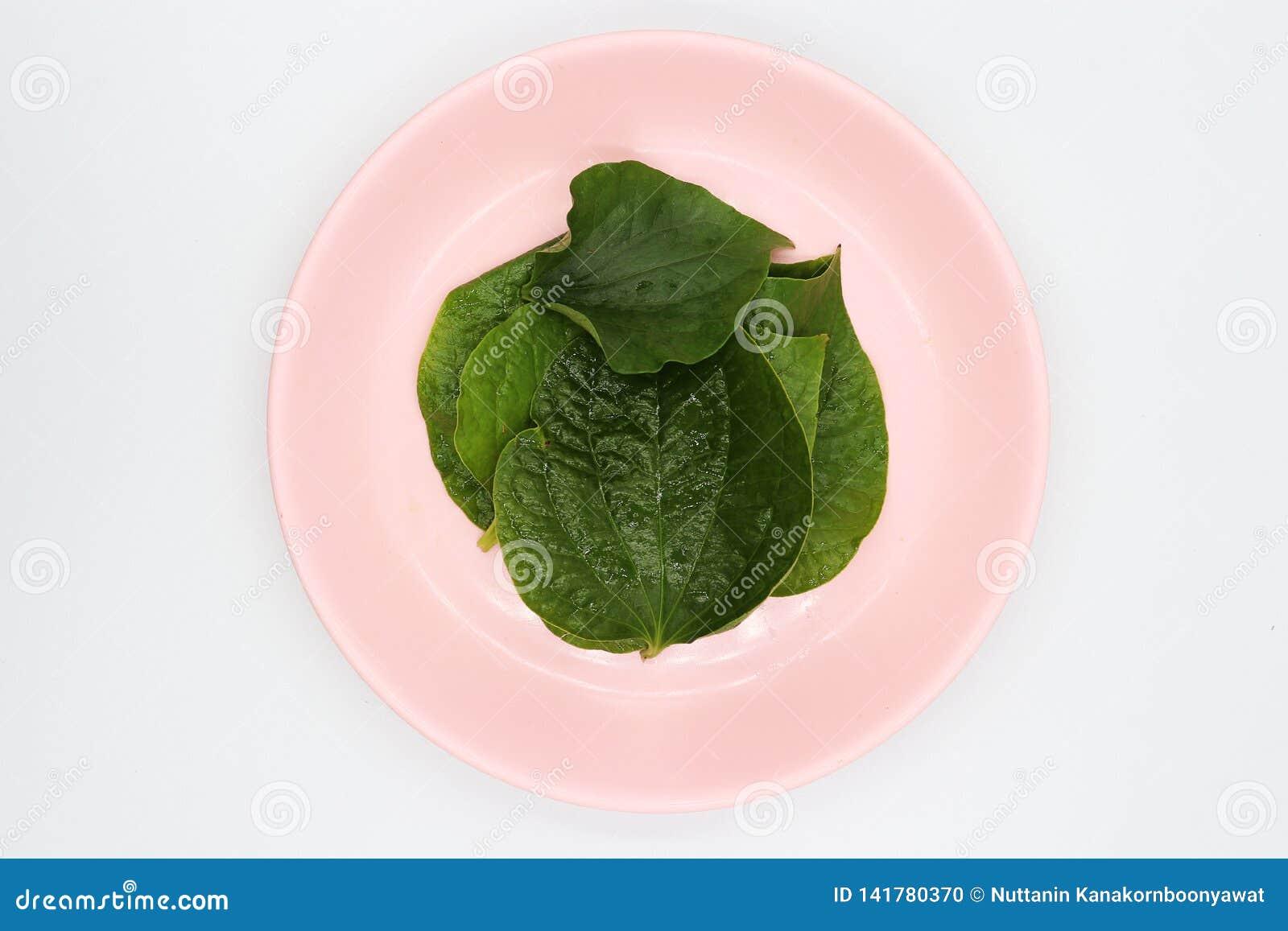 Chaplo lämnar i rosa maträtt på vit bakgrund