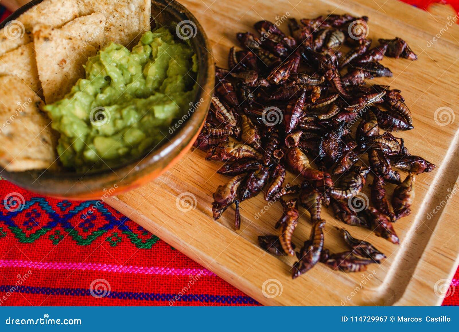 Chapulines cuisine mexicaine traditionnelle de casse cro te de sauterelles d 39 oaxaca mexique - Cuisine mexicaine traditionnelle ...
