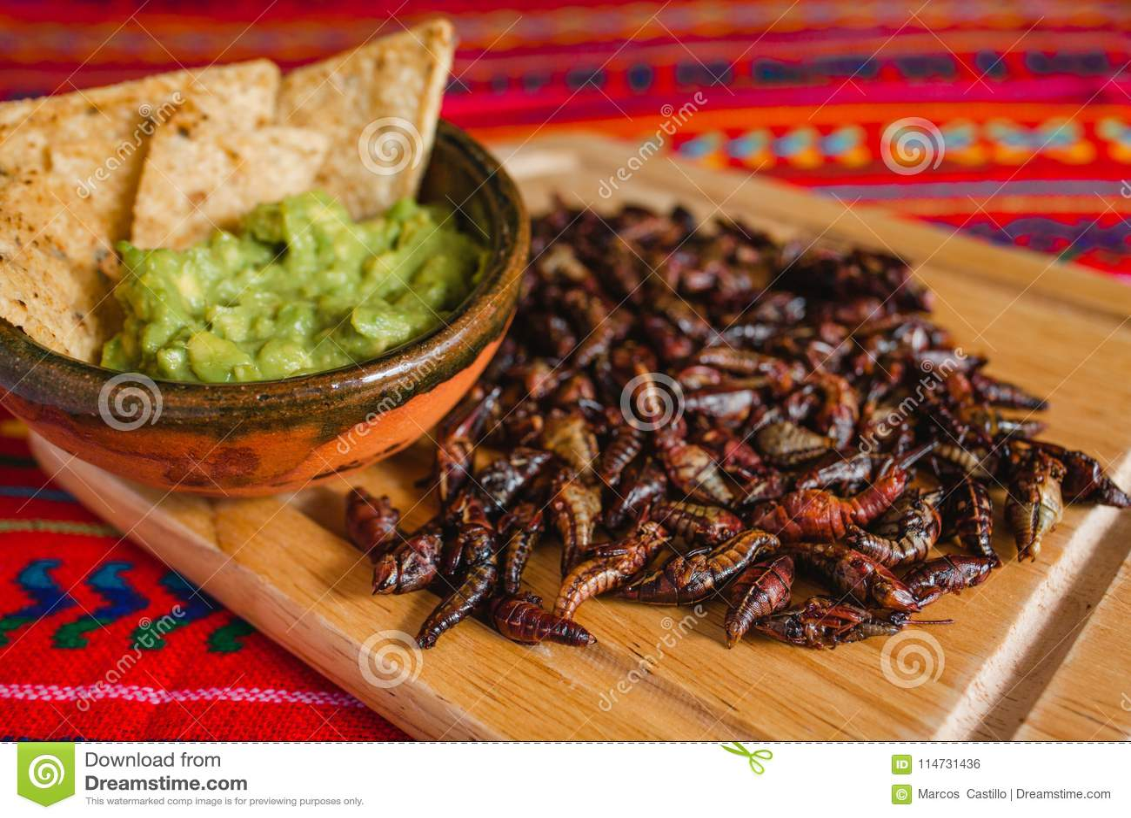 Chapulines, sprinkhanen en guacamole snack traditionele Mexicaanse keuken van Oaxaca Mexico