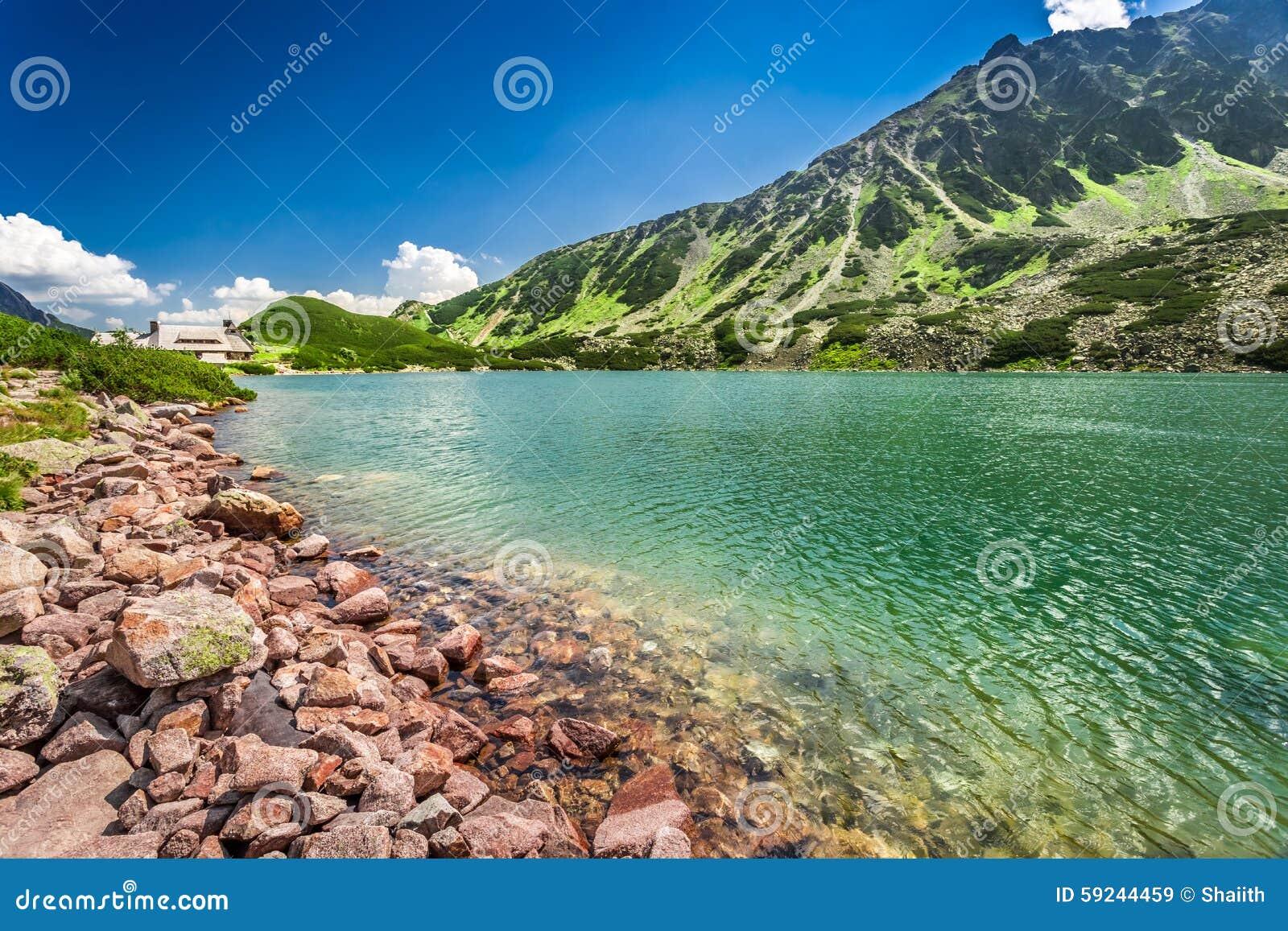 Charca cristalina en las montañas de Tatra