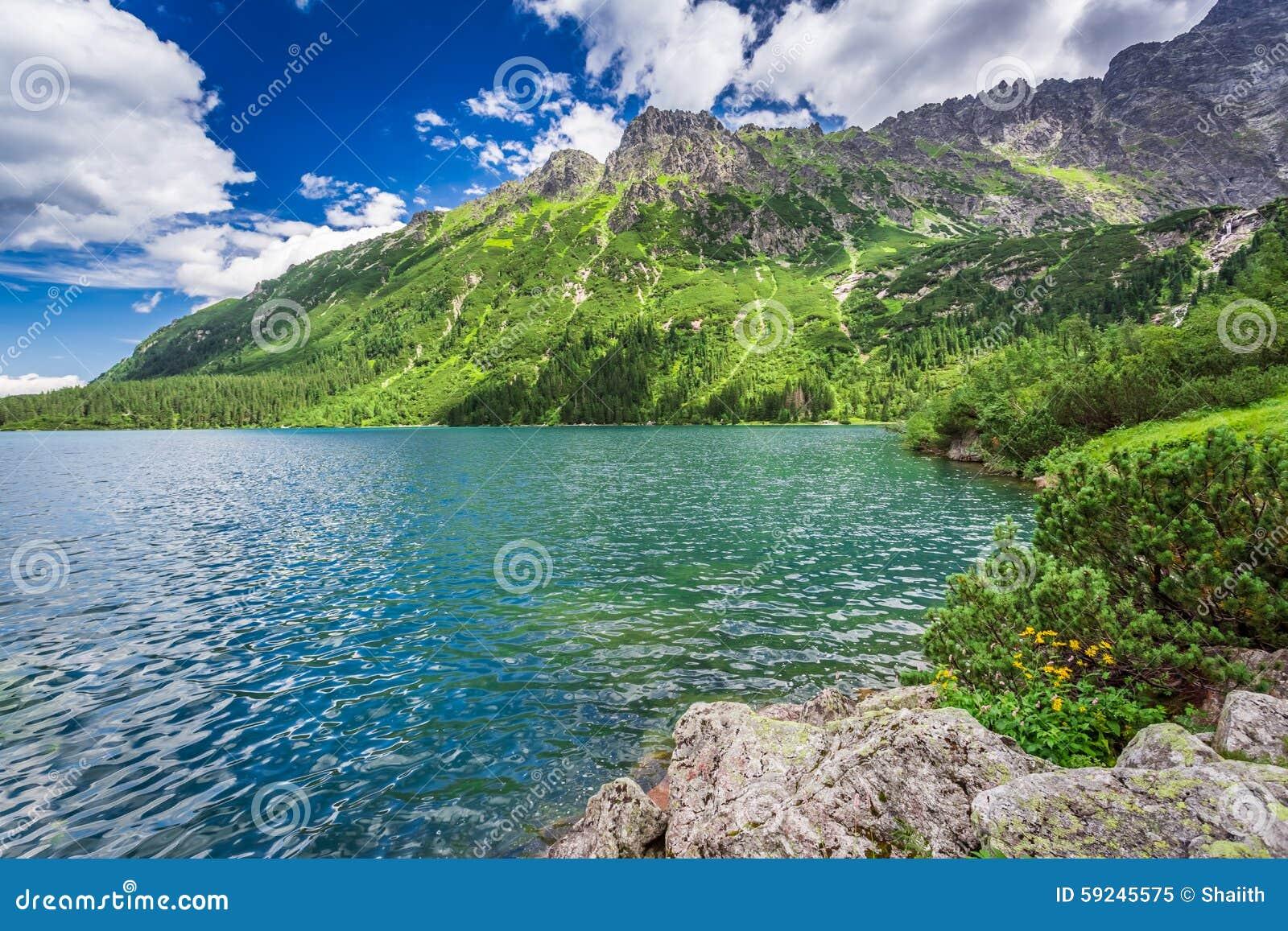 Charca maravillosa en las montañas en la salida del sol