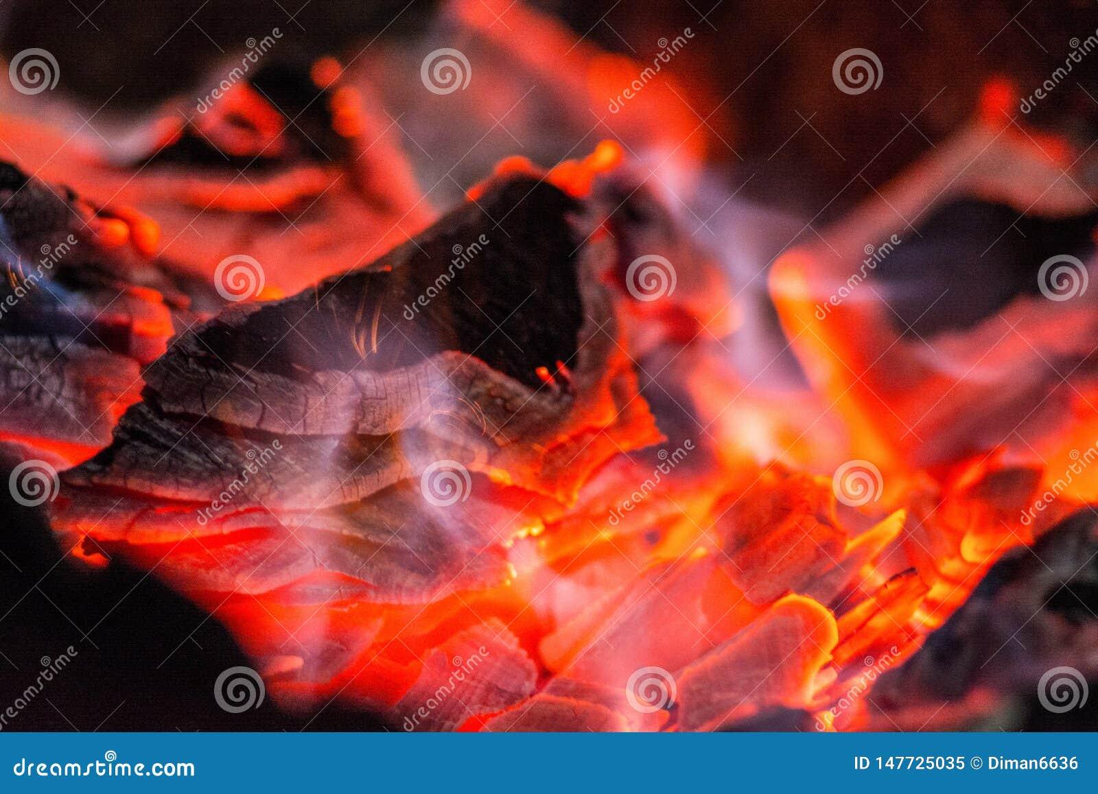Charcoal Cuerno ardiente Carbones ardientes en la parrilla