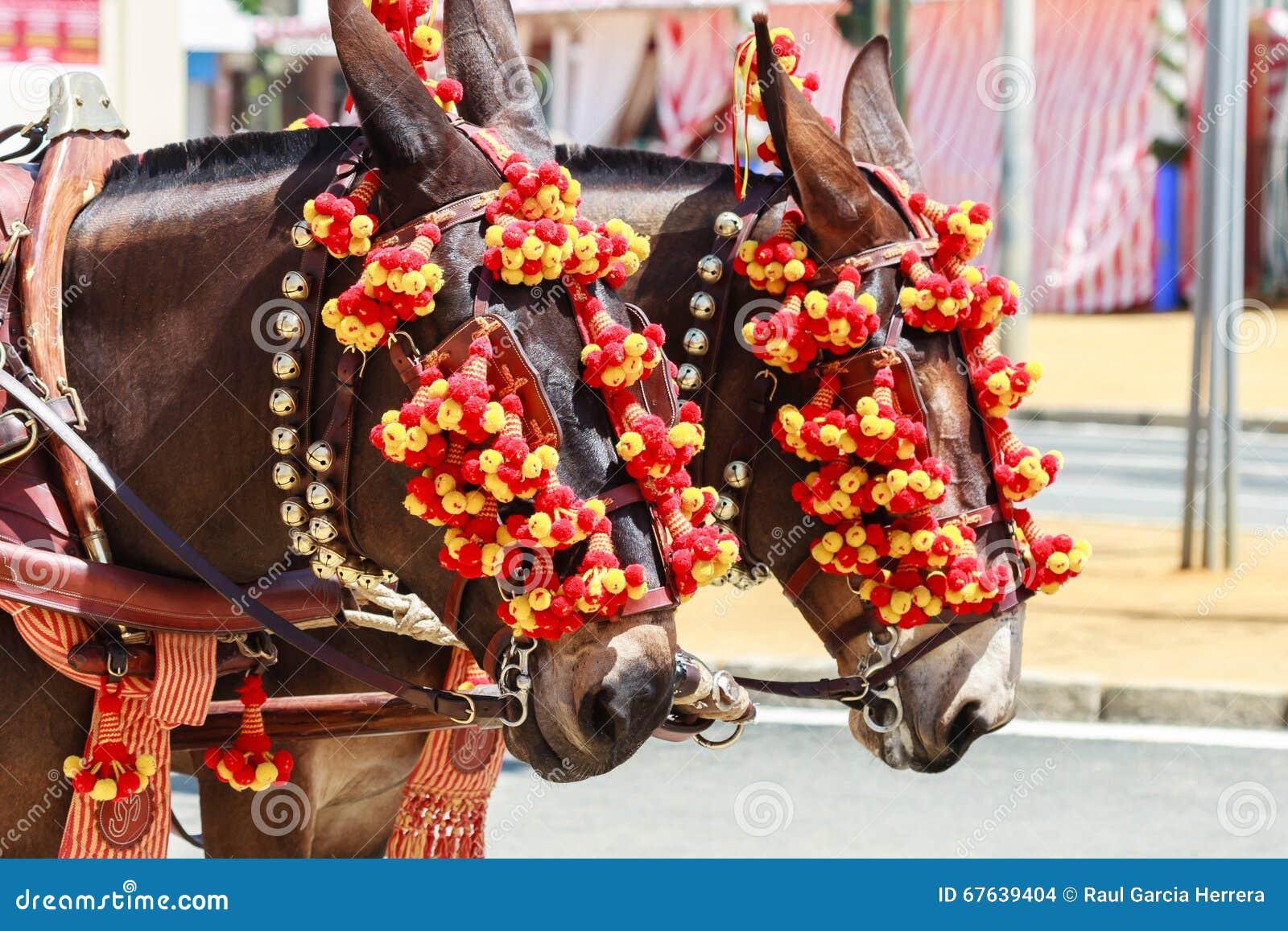 Chariot hippomobile sur la foire de Séville