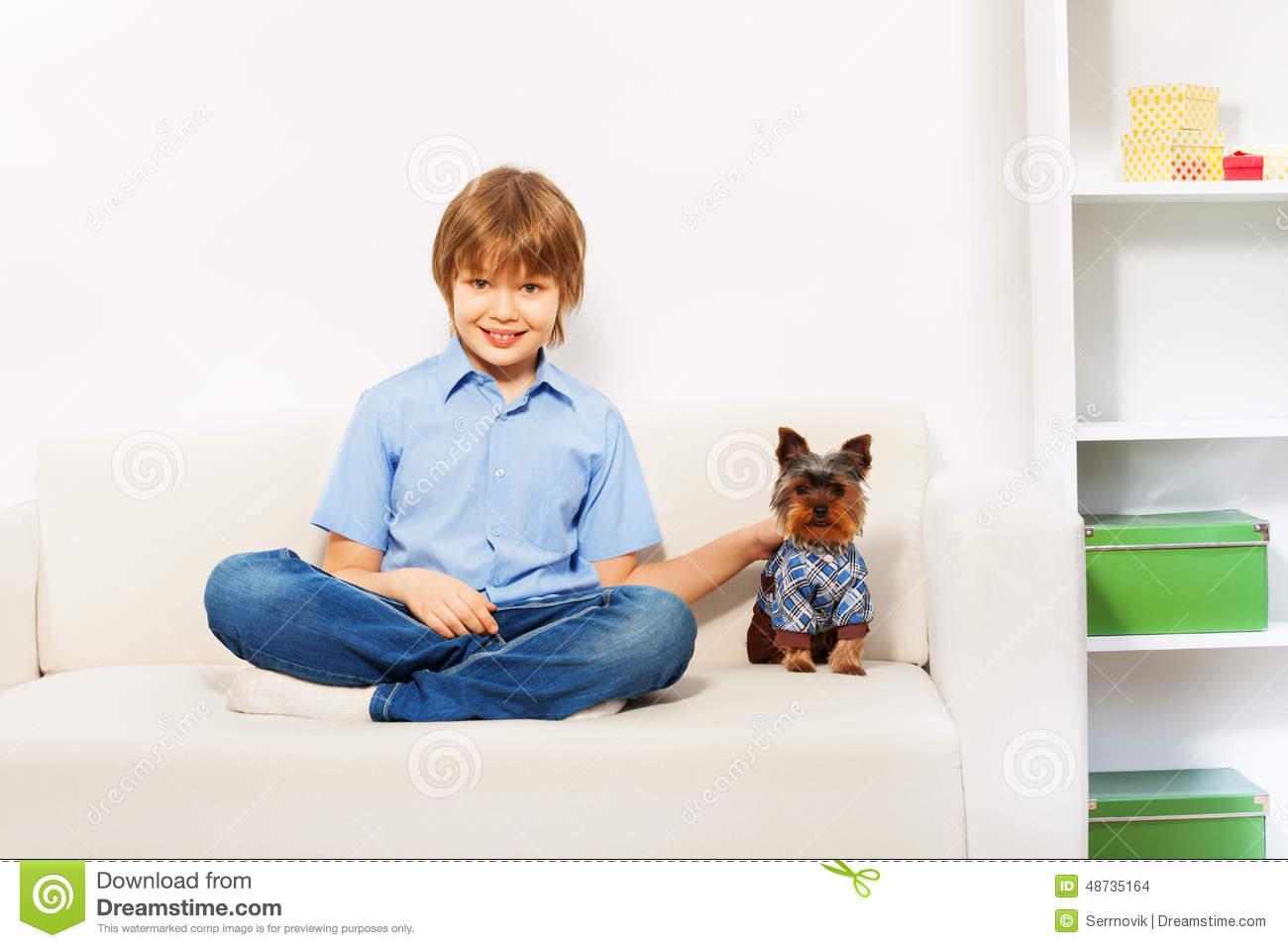 Charming Brown Yorkshire Terrier With Boy On Sofa Stock Photo ...