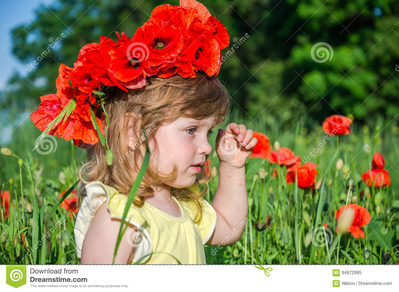 Charming Little Girl In A Poppy Field With A Bouquet Of Poppies On