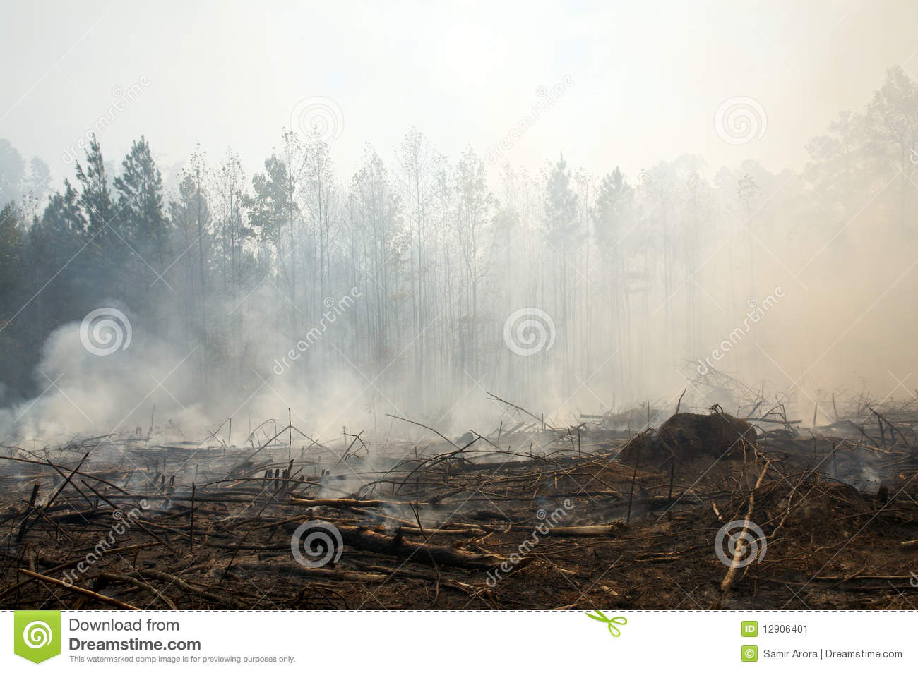 Charred landscape and smoke from a prescribed fire