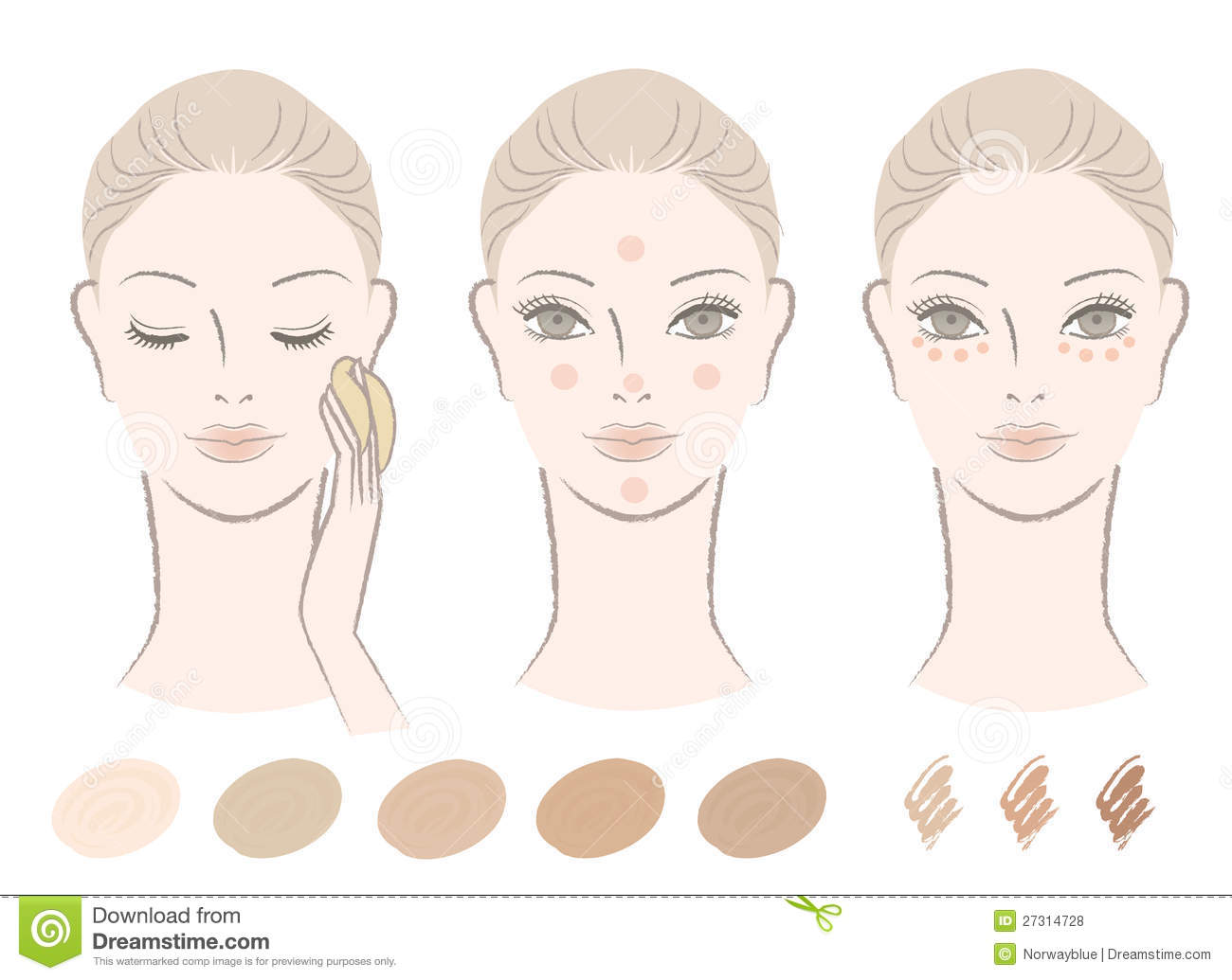 Chart Of How To Apply Foundation And Concealer Royalty Free Stock ...
