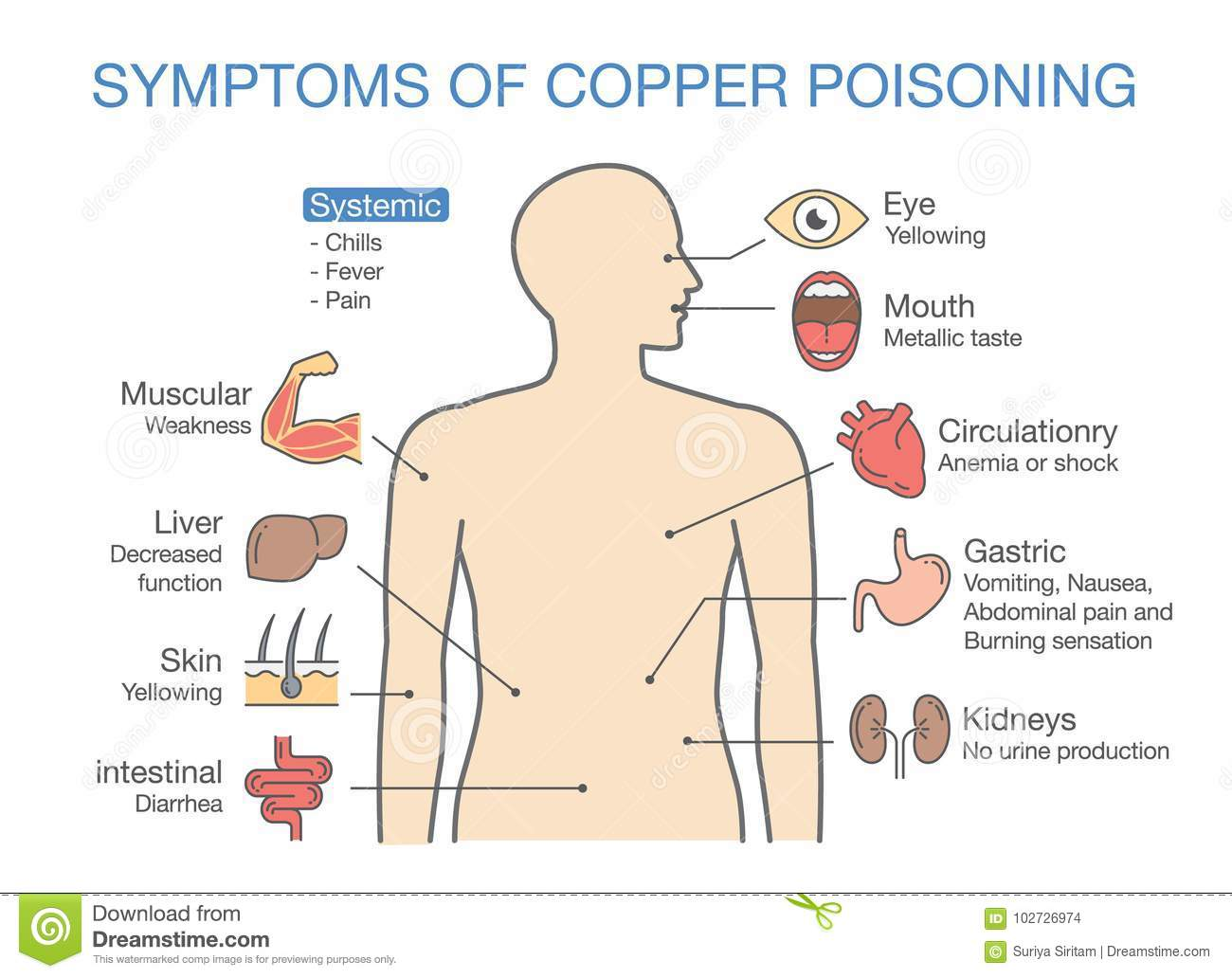 chart of the main symptoms of copper poisoning