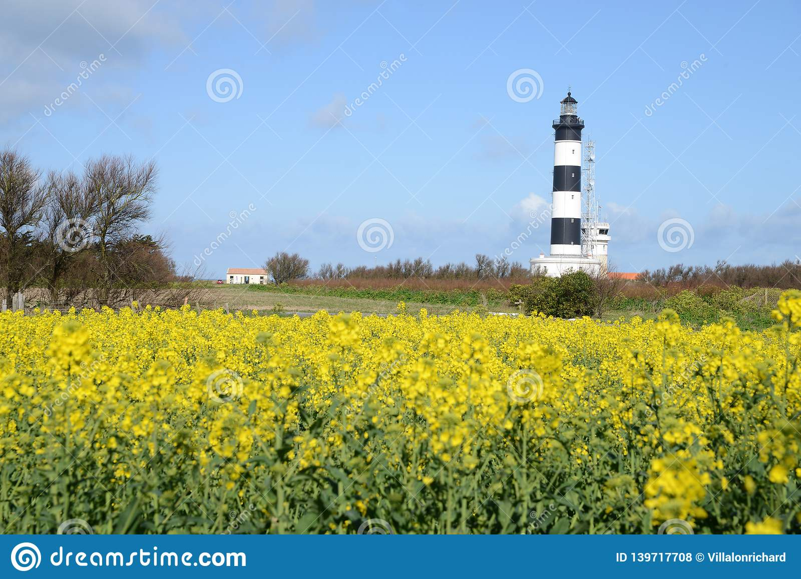 Chassiron lighthouse on the island of Oléron