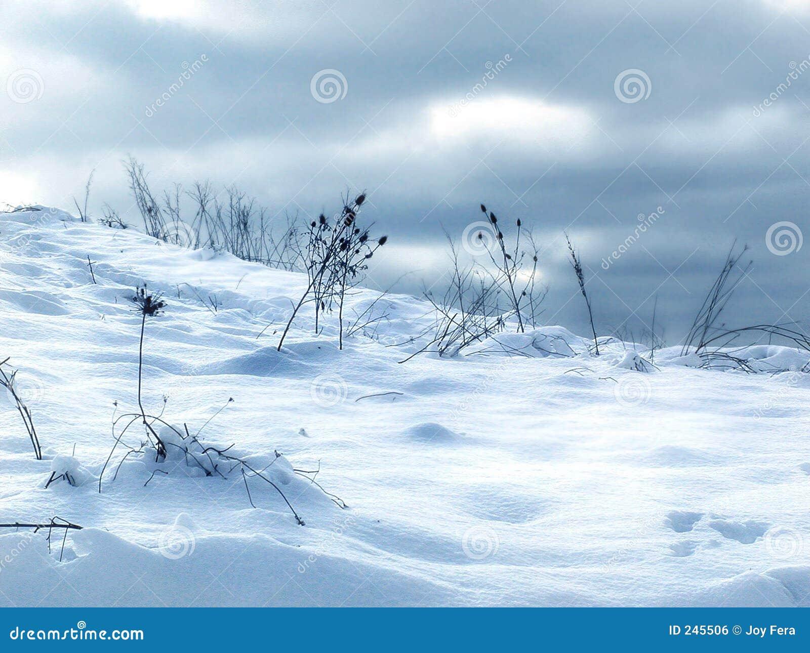Chassoirs de neige