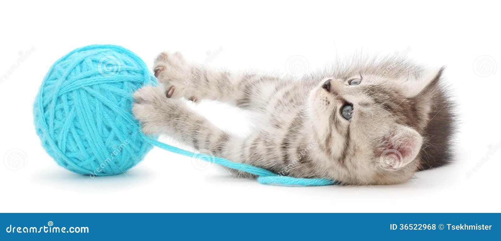 Chat avec la boule du fil
