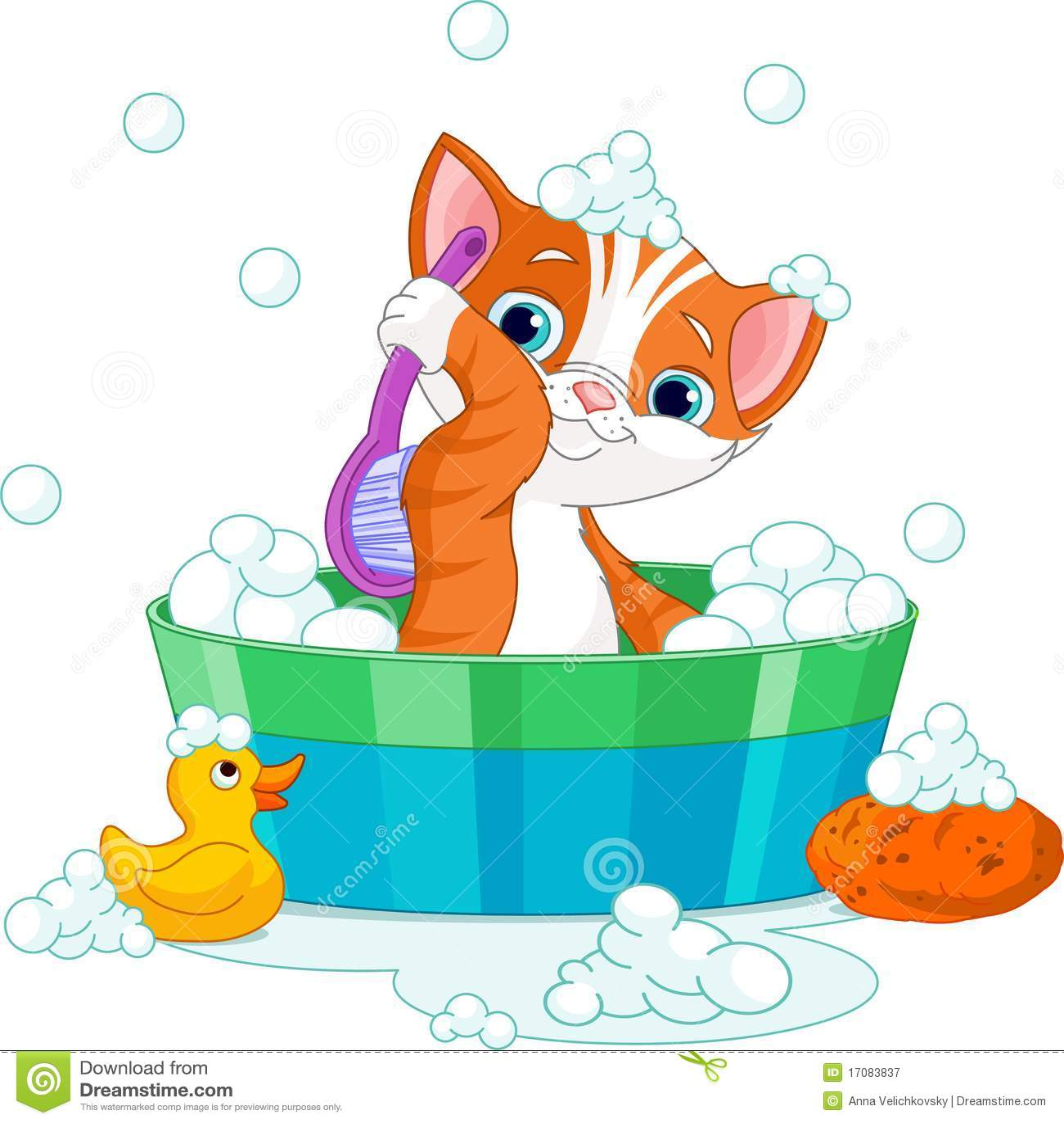Chat ayant un bain