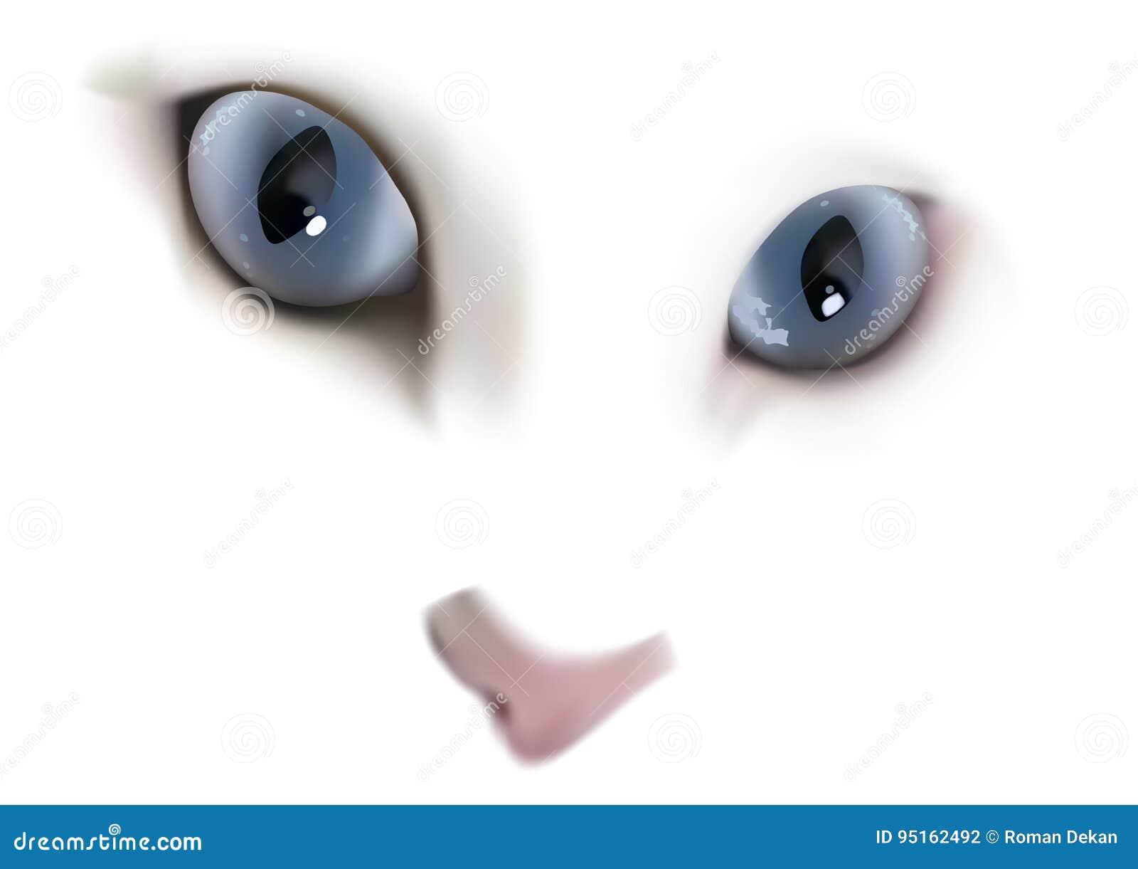Chat blanc avec des yeux bleus