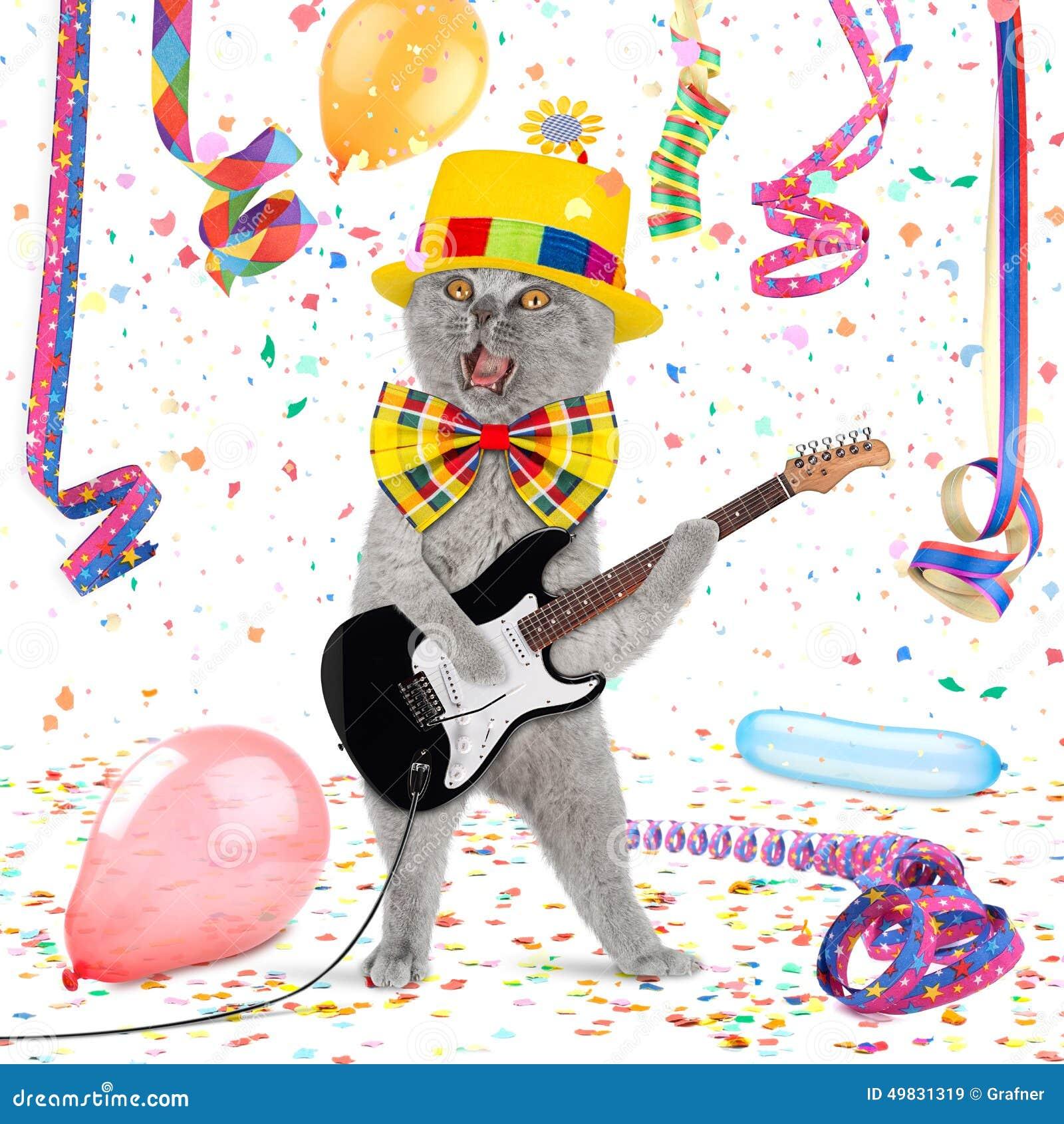 Chat drôle de guitare