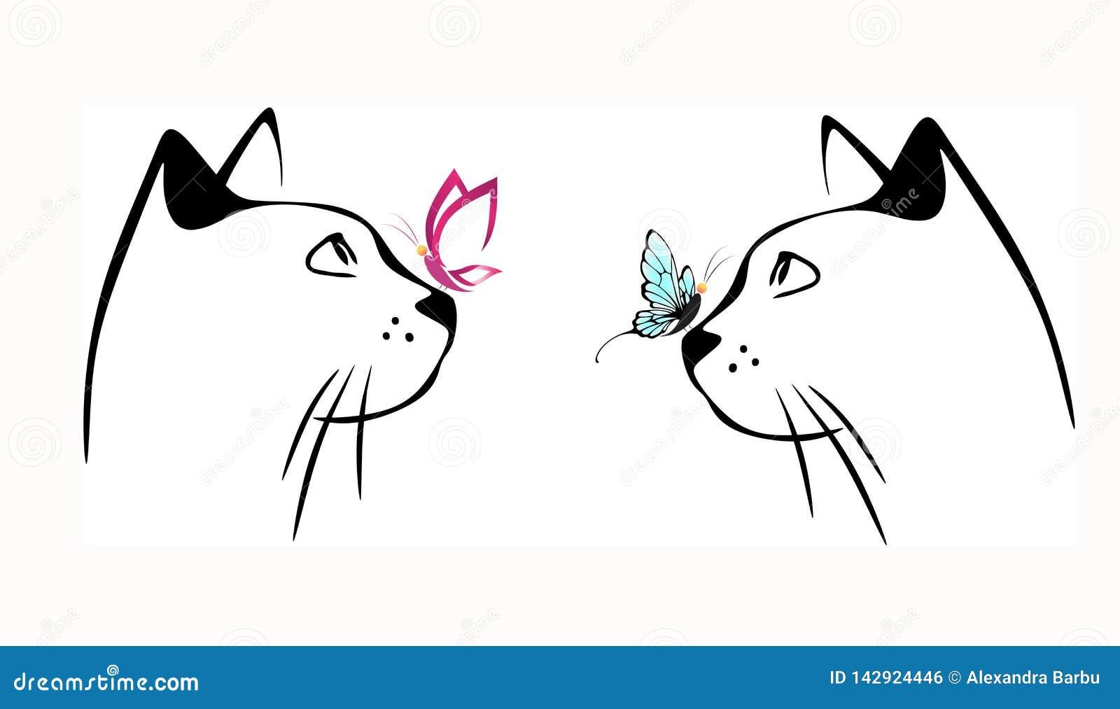 Chat et papillon sur le nez