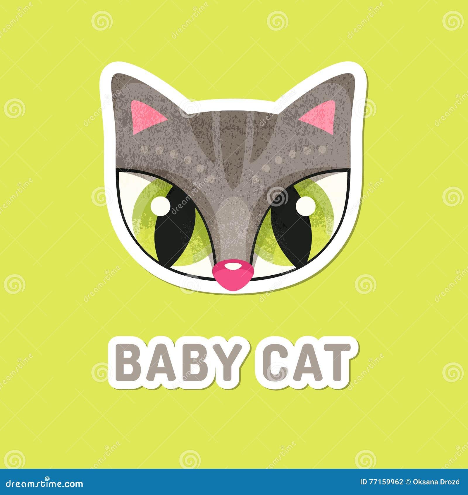 Chat gris de bébé avec les yeux extrêmement grands