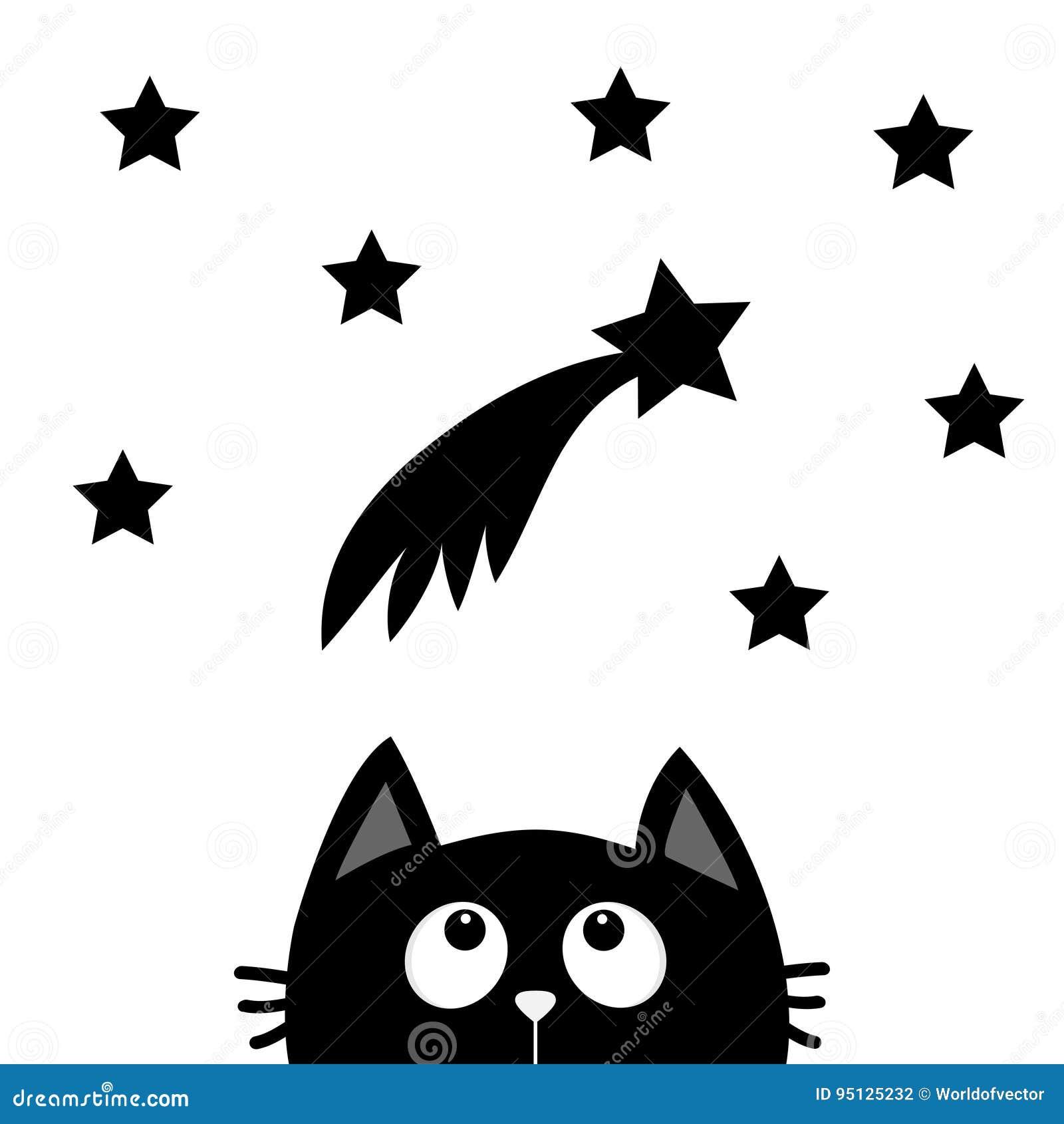 Chat Noir Recherchant A La Comete Avec Des Etoiles Personnage De