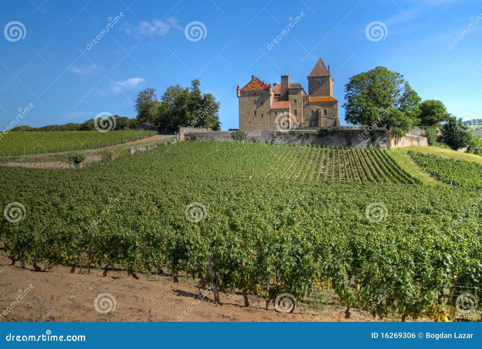Chateau de Pierreclos, Bourgogne, France