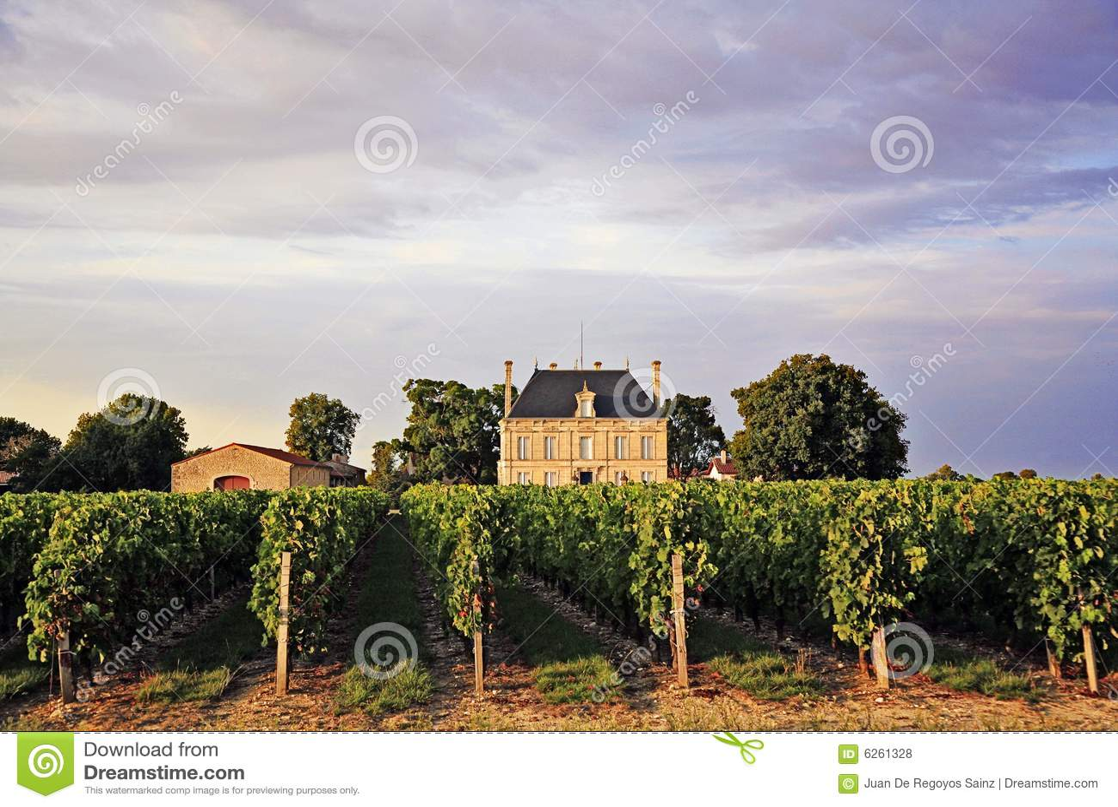 Chateauvingårdar