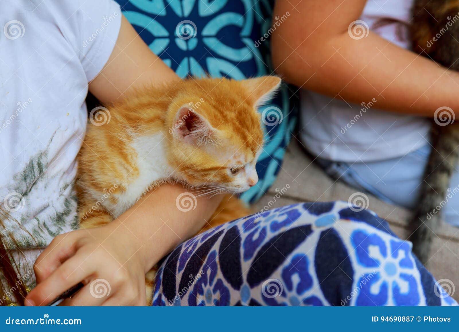 Chaton nouveau-né dans le girl& x27 ; main de s Chat nouveau-né de bébé Minou rouge dans des mains de soin Photo mignonne de fin