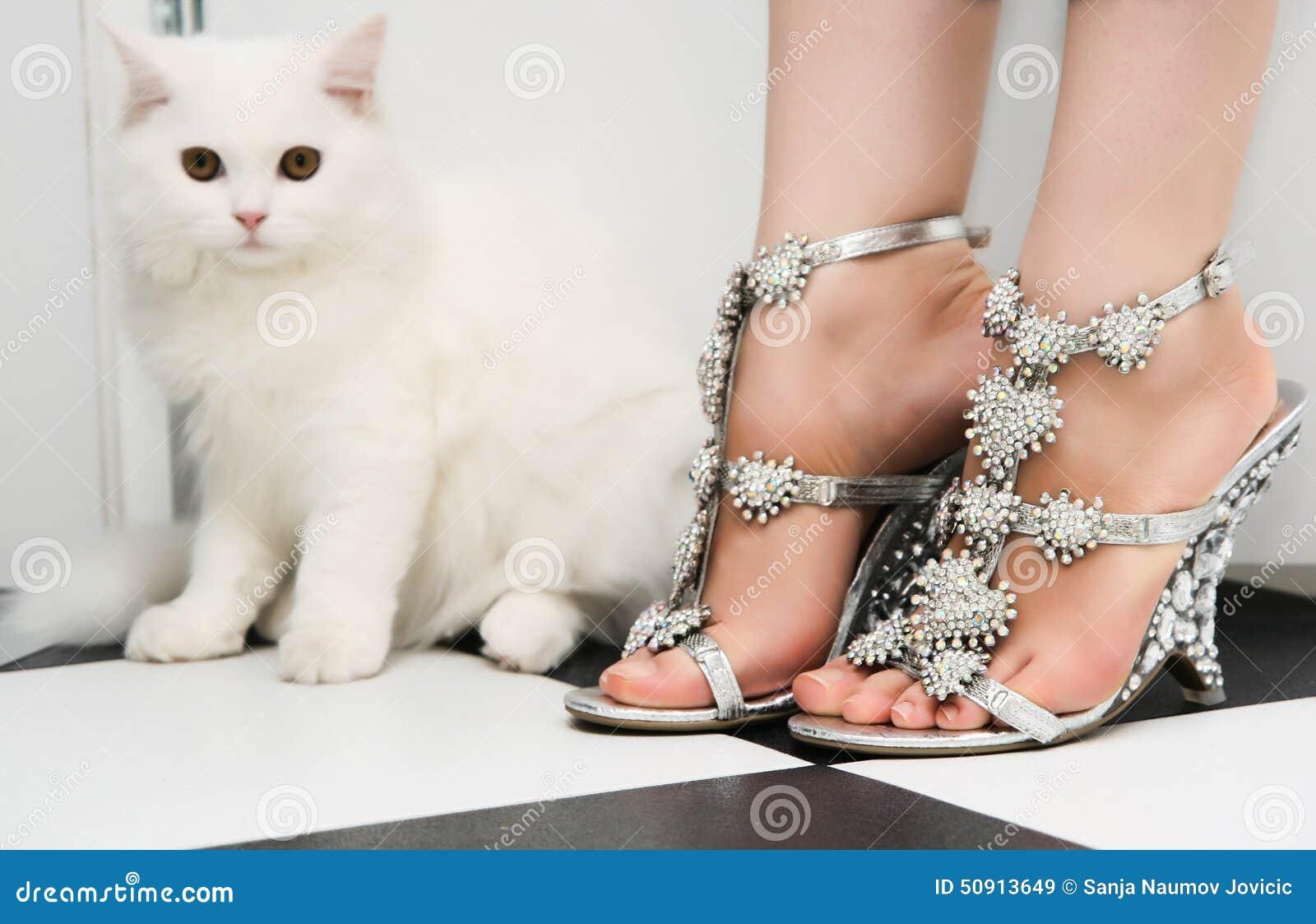 Chaussures persanes blanches de chaton et de mode