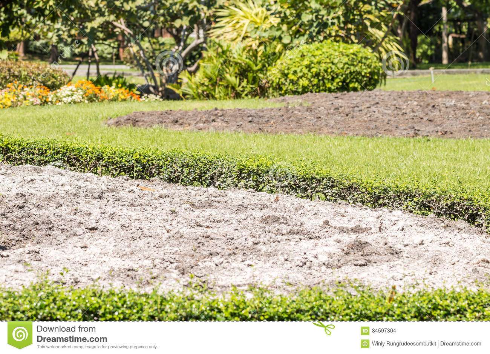 Chaux Sur Le Sol Dans Le Jardin Photo stock - Image du poudre ...
