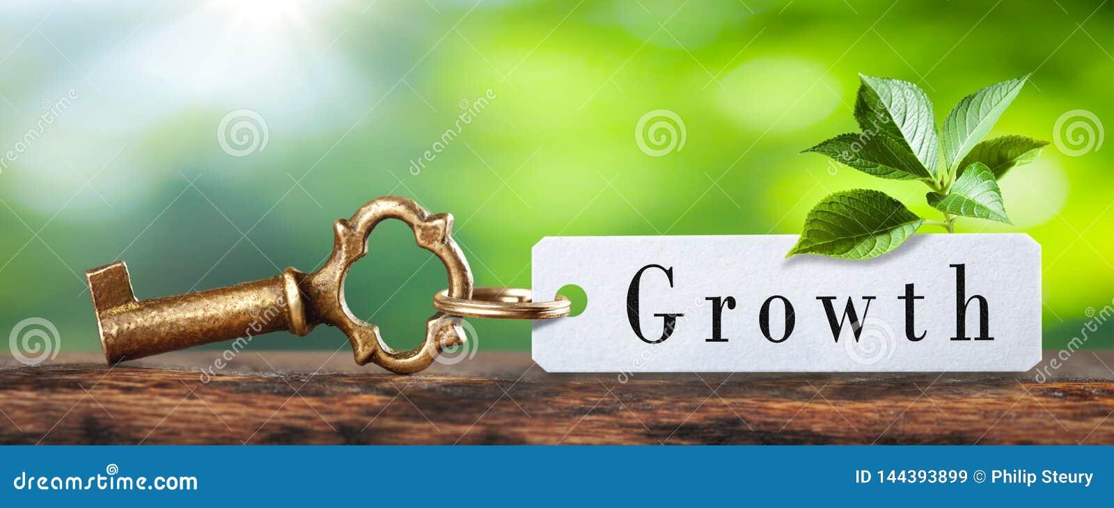 Chave ao crescimento