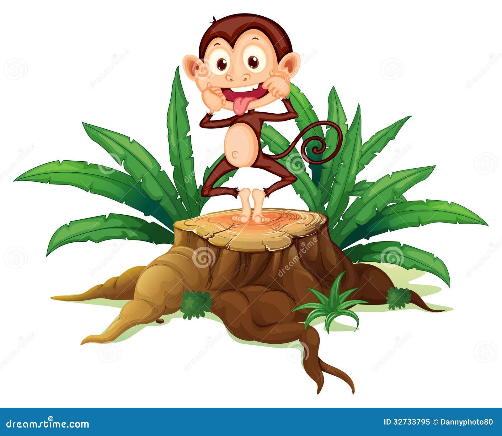 Chełpliwa małpa nad bagażnik
