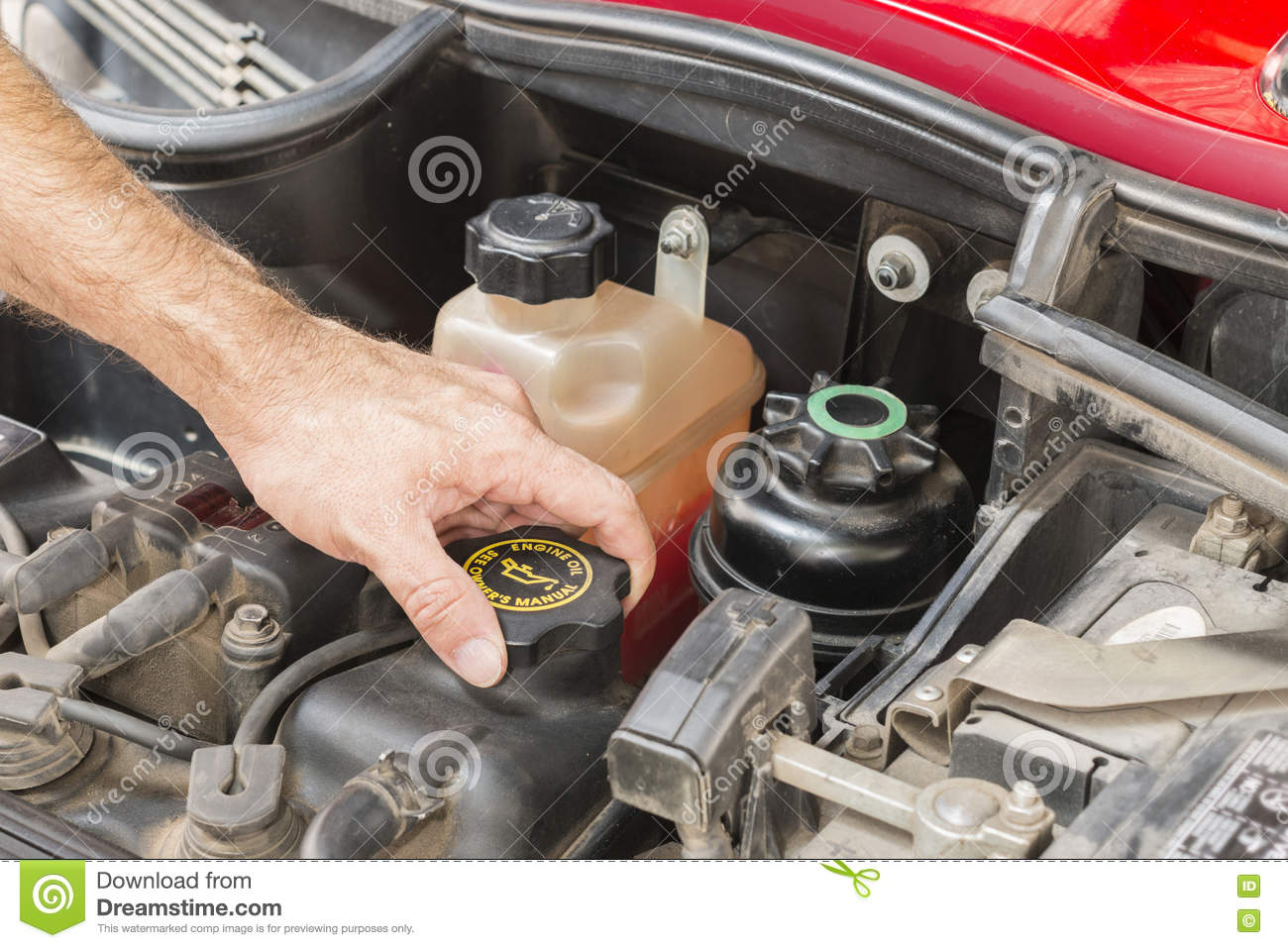 Check The Car Engine Stock Photo