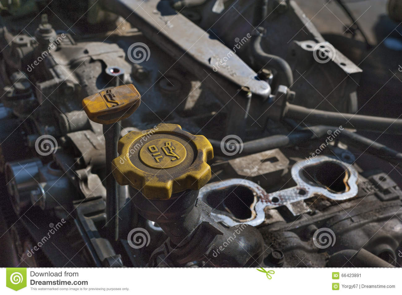 Checking Motor Oil Stock Photo Image 66423891