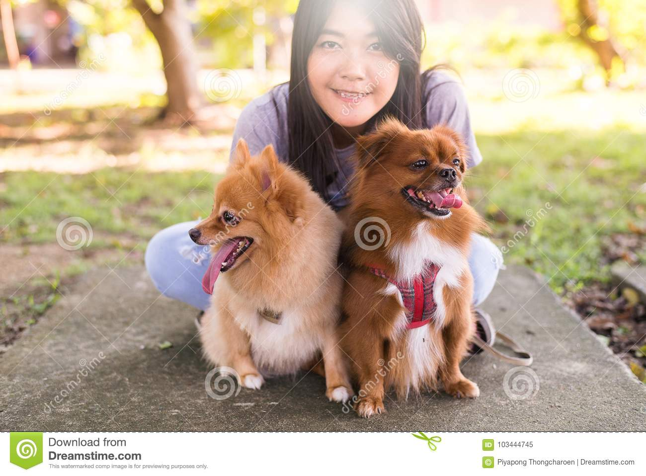 Cheerful asian young teen girl playing and happy fun with her dog at public  park