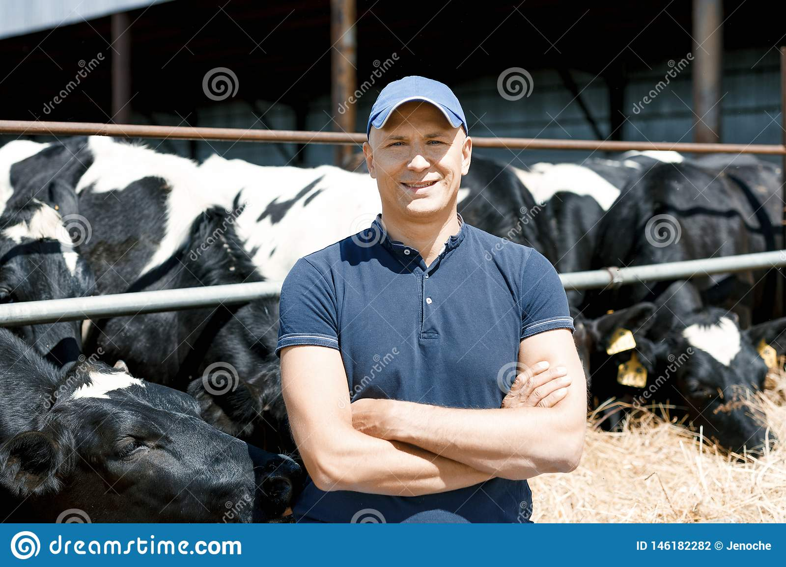 Cheerful farmer surrounded by cows on farm