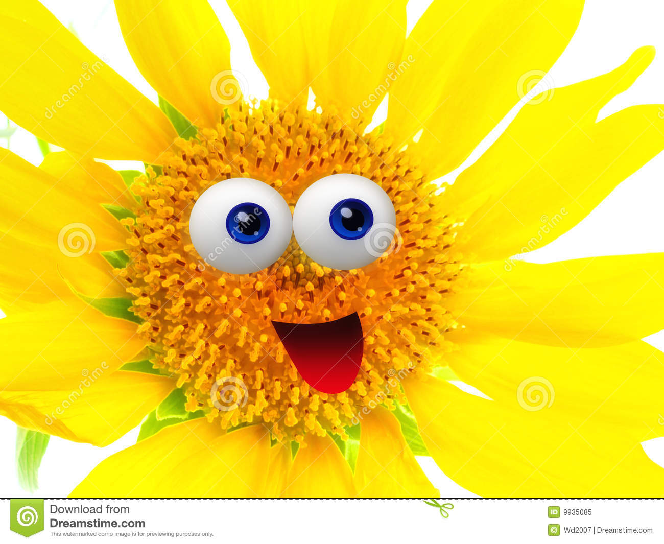cheerful sun flower character royalty free stock photo sell clipart drawings sale clip art free