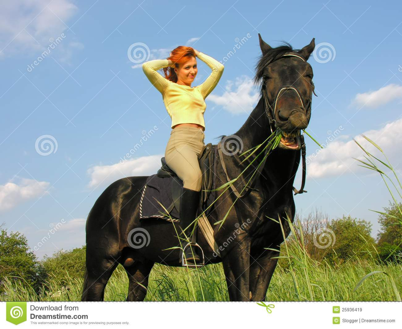 691 Funny Horse Rider Photos Free Royalty Free Stock Photos From Dreamstime