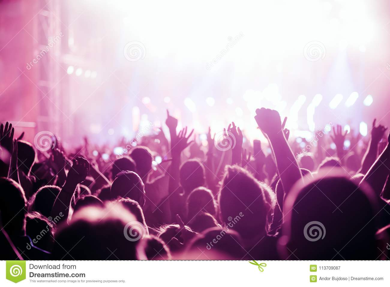 Cheering Crowd With Hands In Air At Music Festival Stock Image