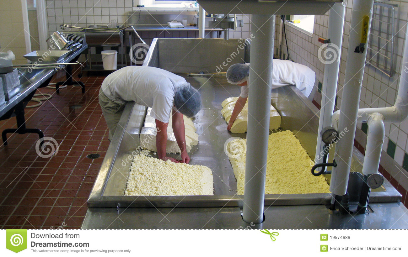 business plan cheese making