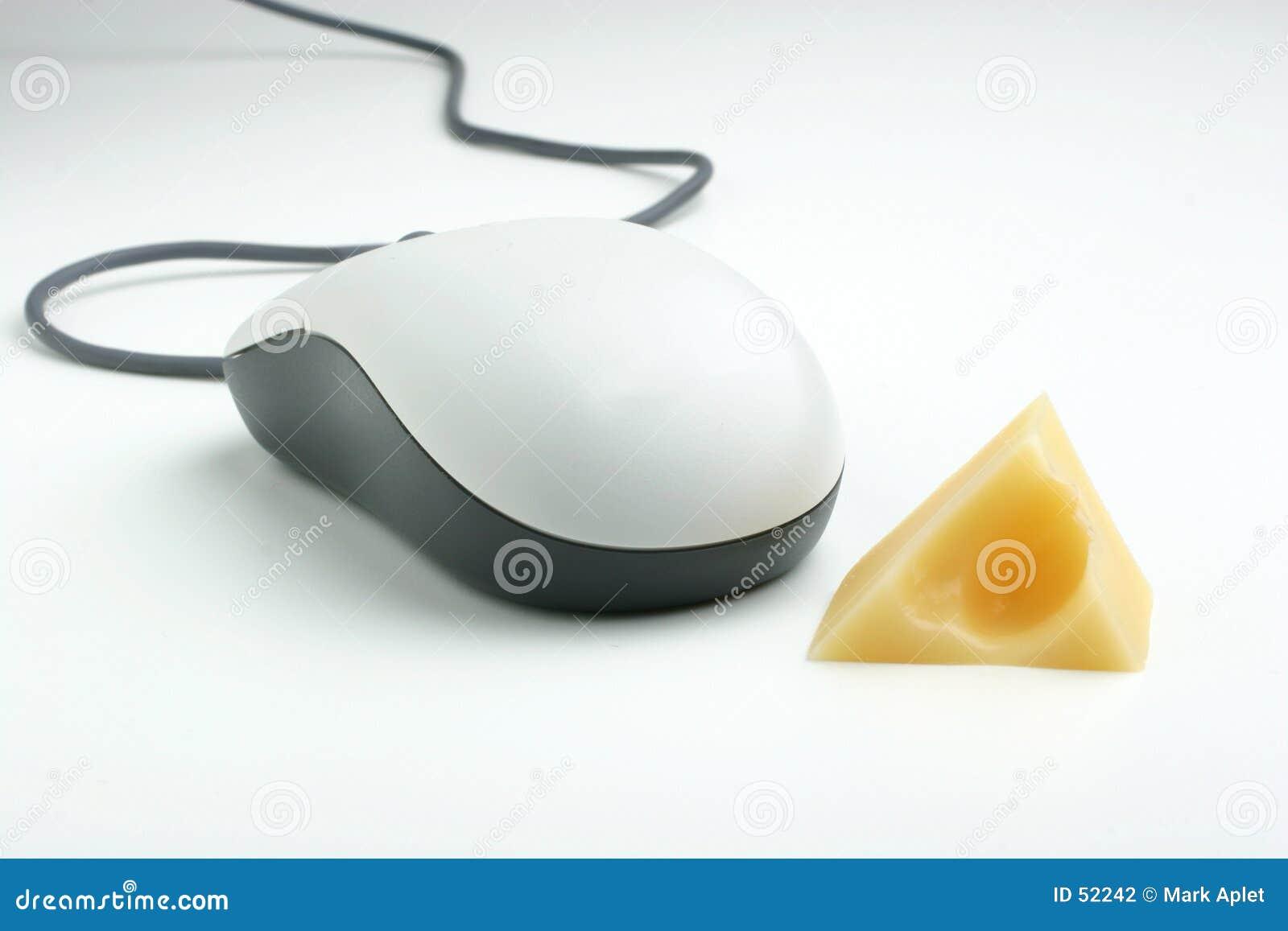 Cheese mysz white