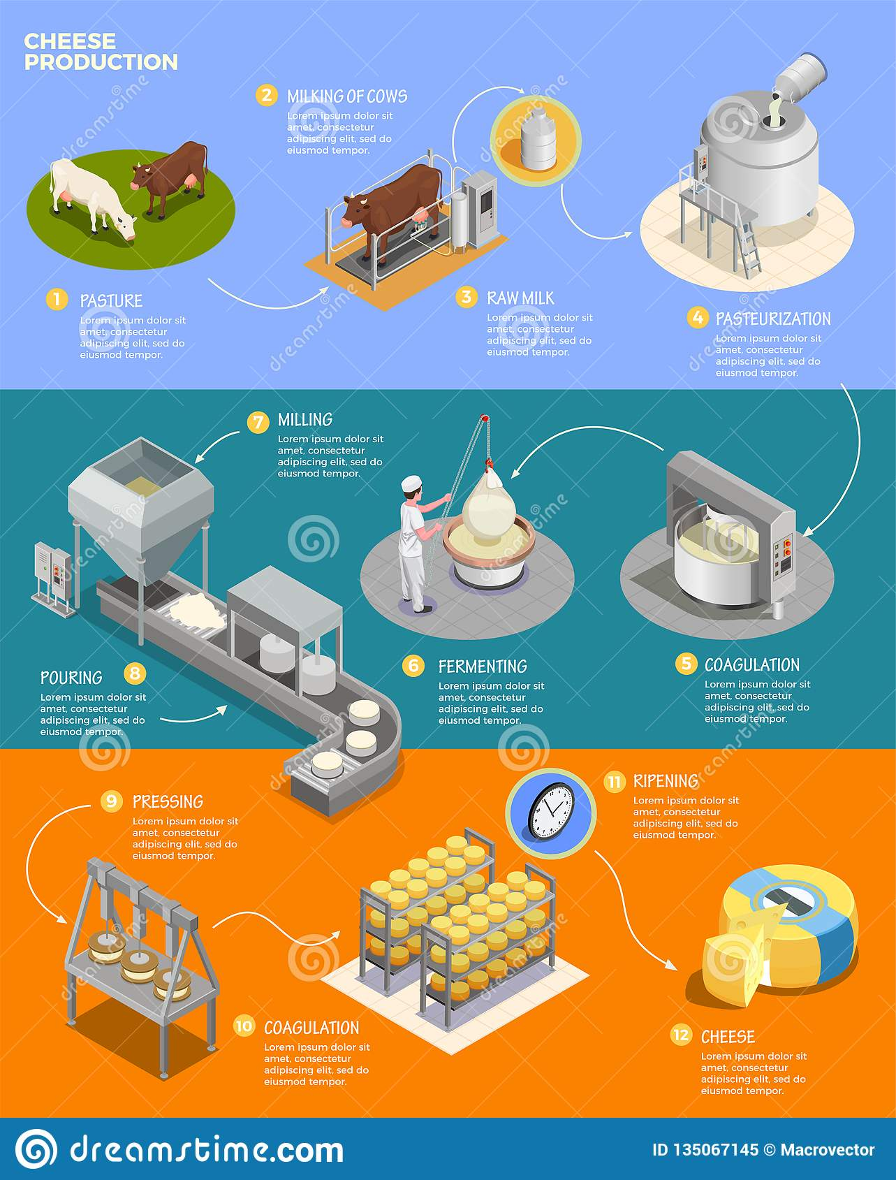 Cheese Production Isometric Infographics