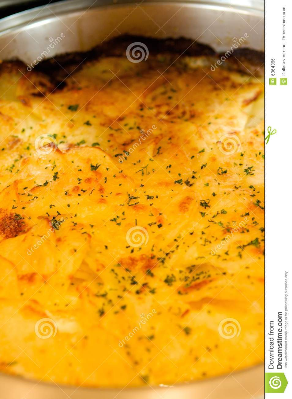 Cheesy Potatoes Au Gratin Royalty Free Stock Image - Image: 6364366
