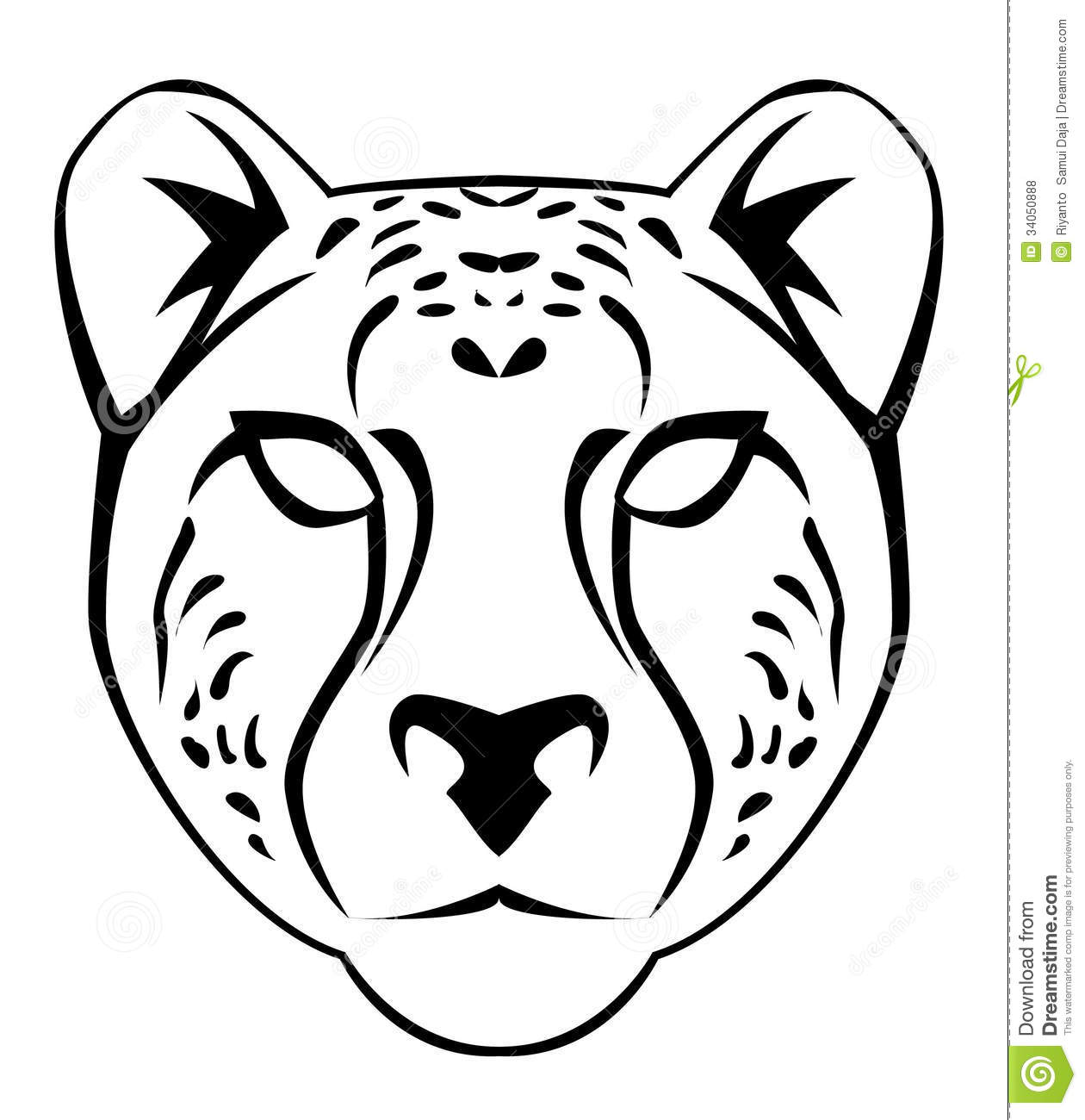 Jaguar Face Drawing Cheetah face royalty free
