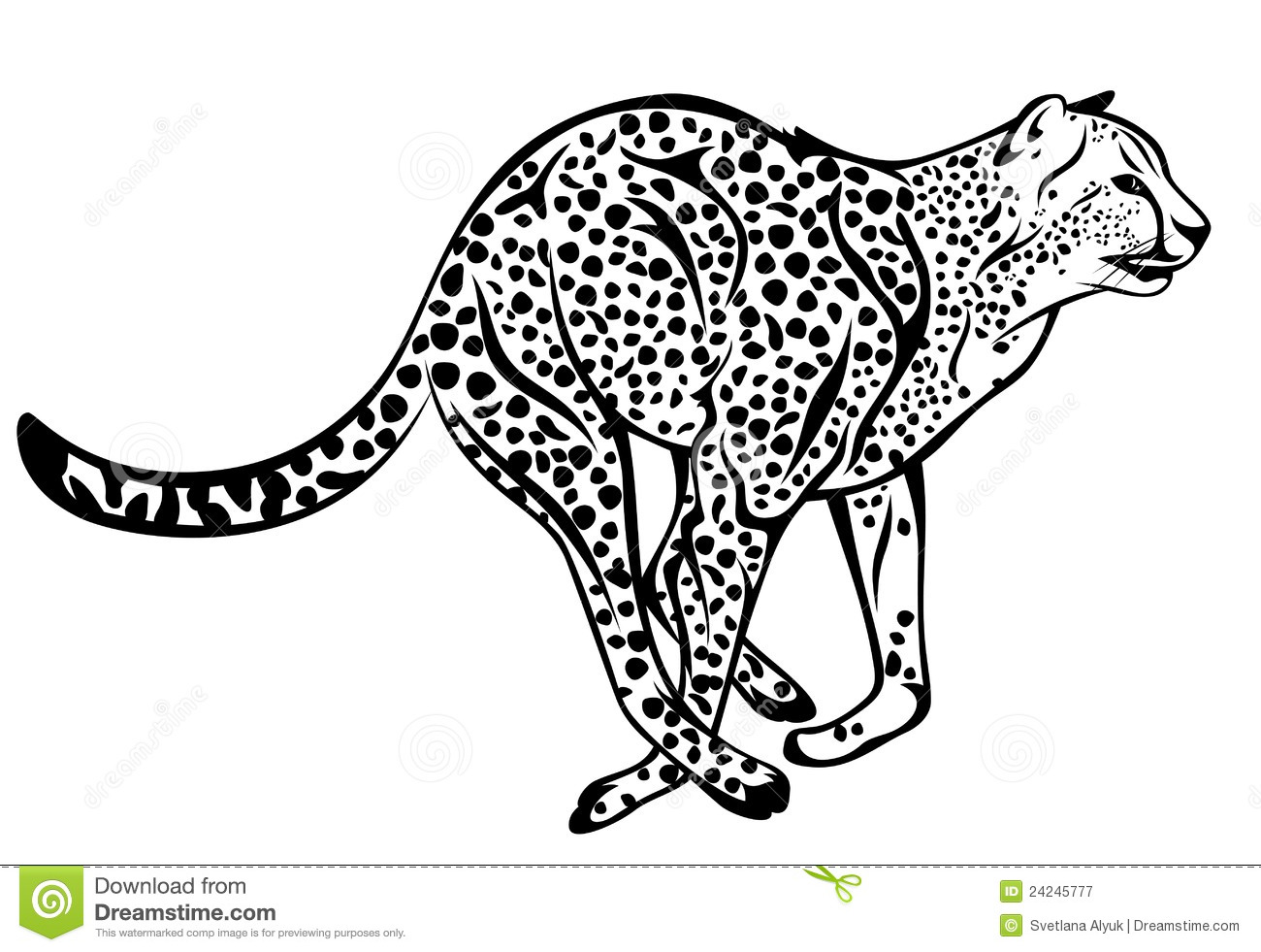 Cheetah Vector Royalty Free Stock Photography - Image: 24245777