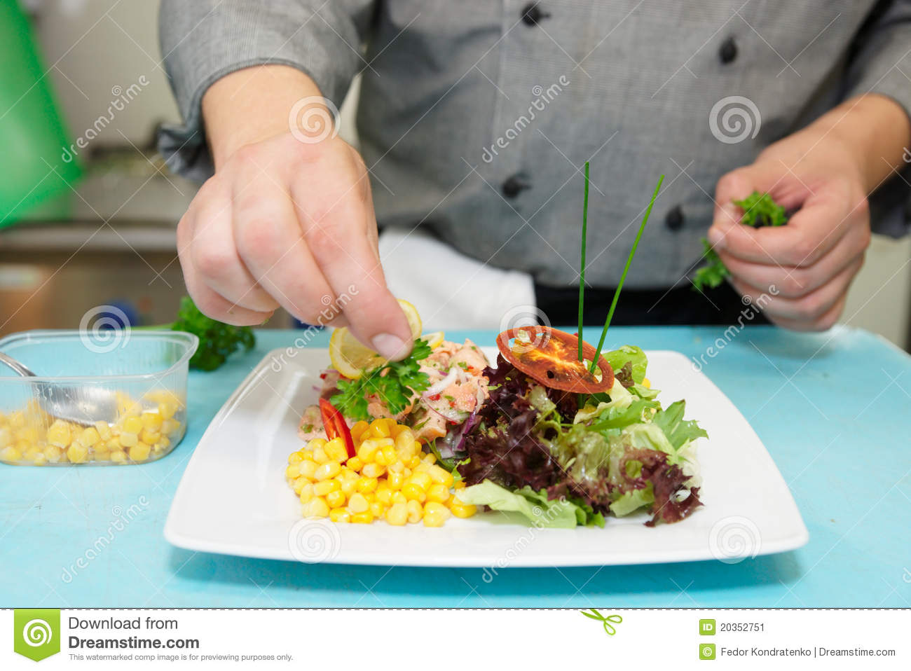 Chef is decorating appetizer stock image image 20352751 for Appetizer decoration