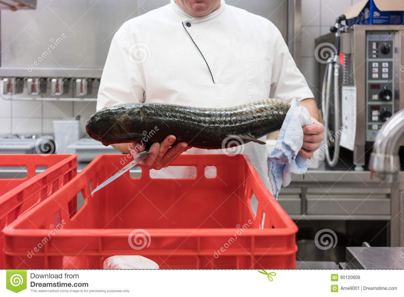 Chef in restaurant kitchen checking fresh fish delivery for Fresh fish delivery