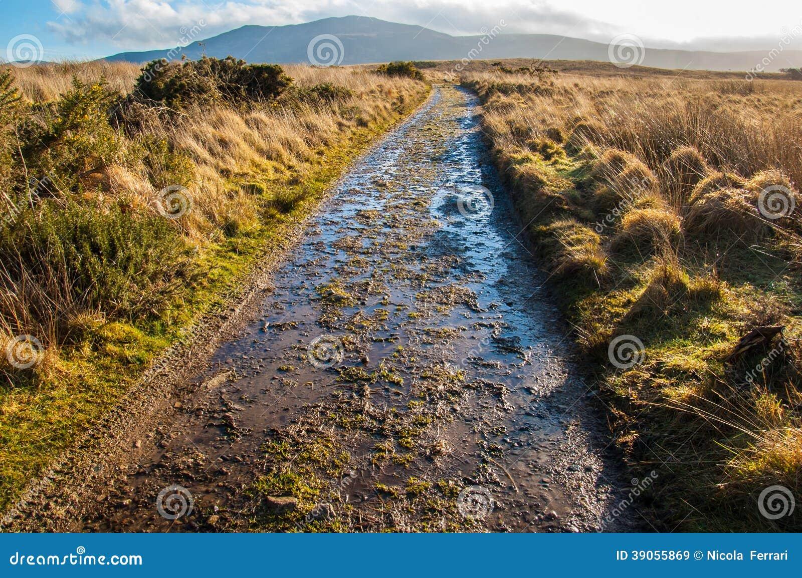 Chemin boueux dans un amarrage en Ecosse rurale