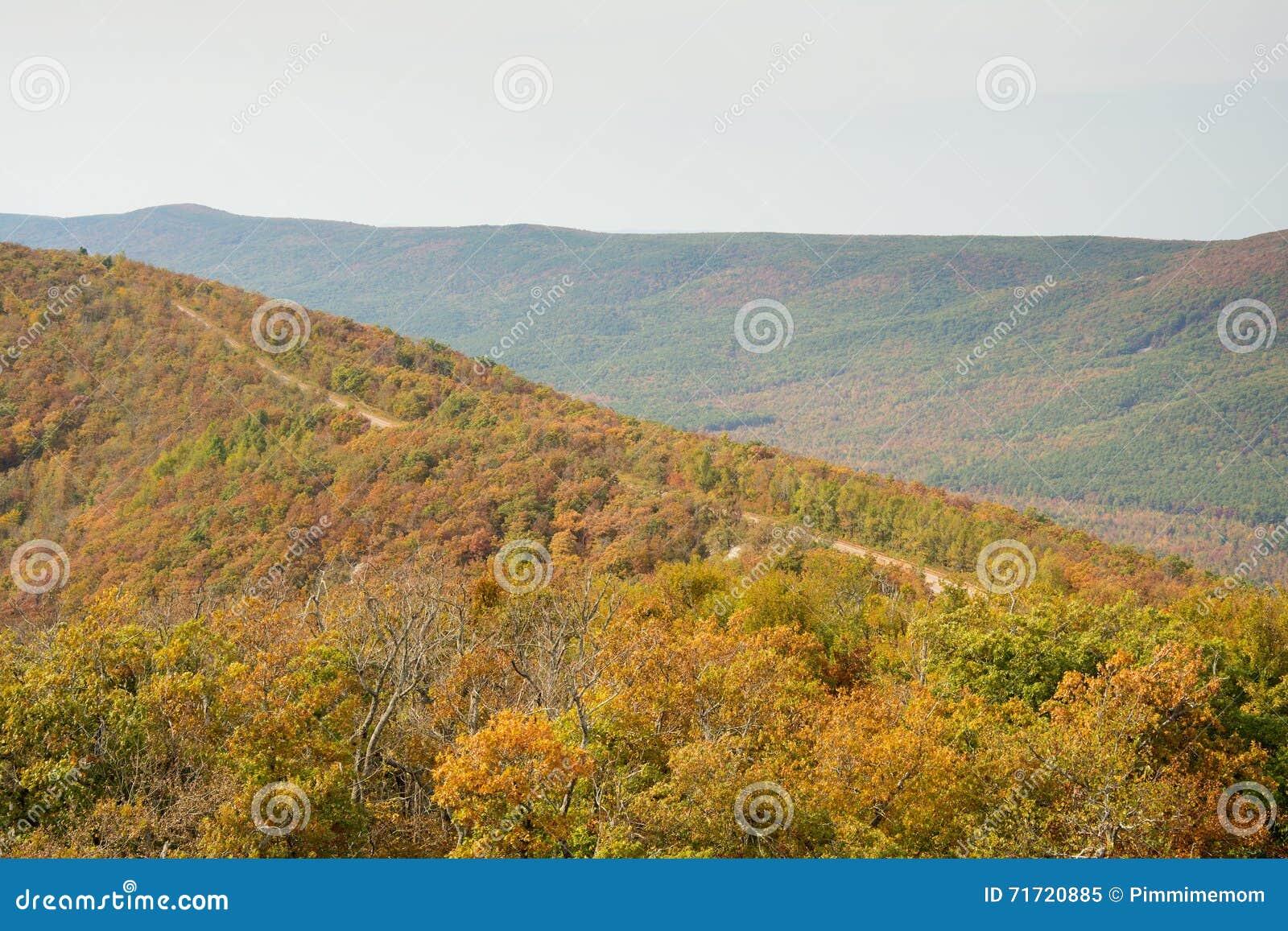 Chemin détourné scénique de Talimena avec la route allant sur la crête de la montagne