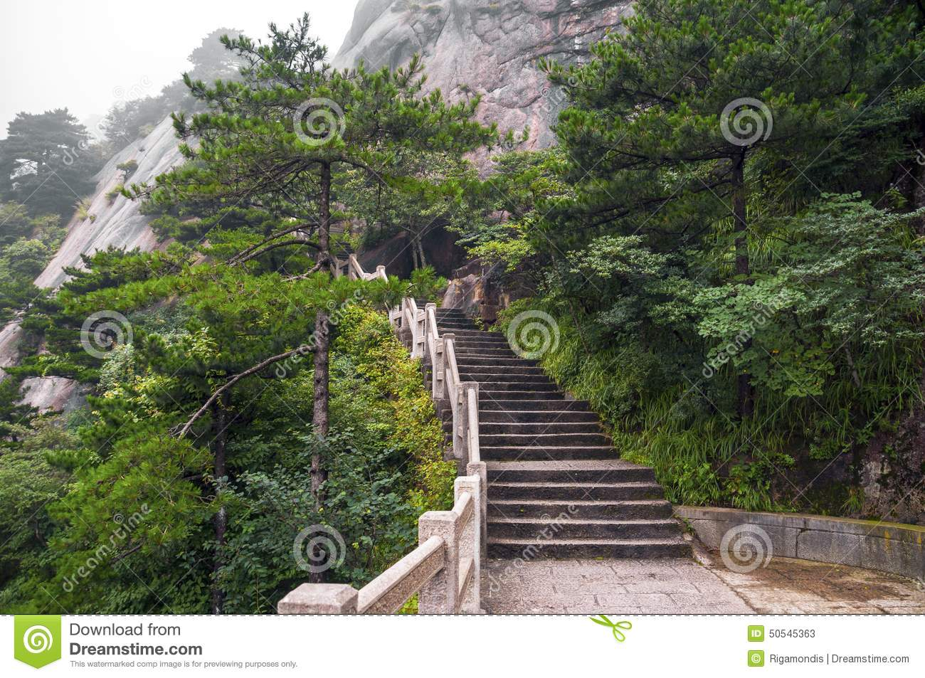 chemin d 39 escaliers de montagne de huangshan dans la for t photo stock image 50545363. Black Bedroom Furniture Sets. Home Design Ideas
