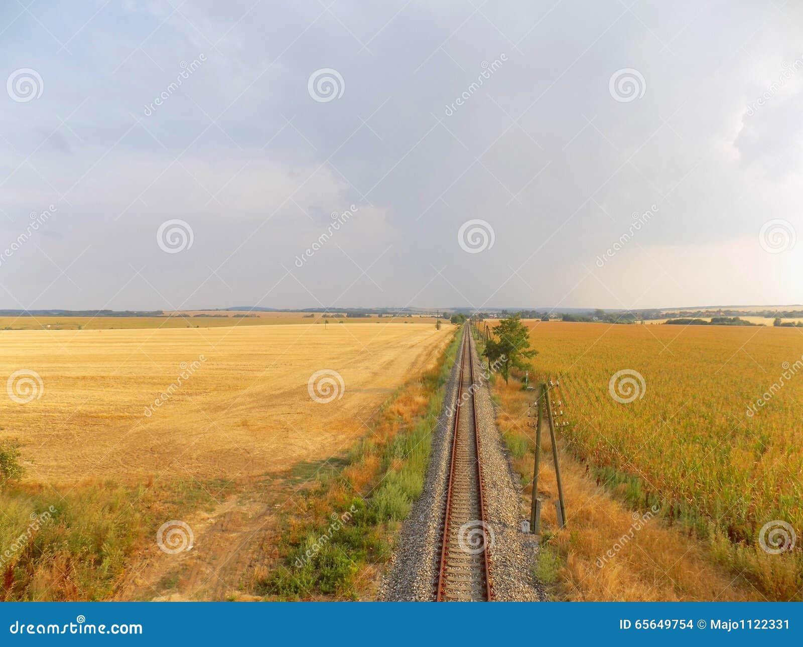 Chemin de fer entre les champs